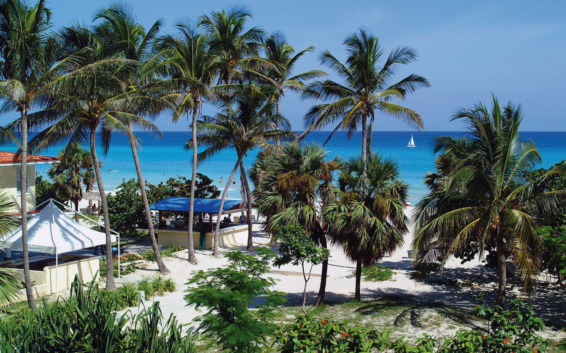 Sol Varadero Beach: natur sol sirenas coral strand palmen