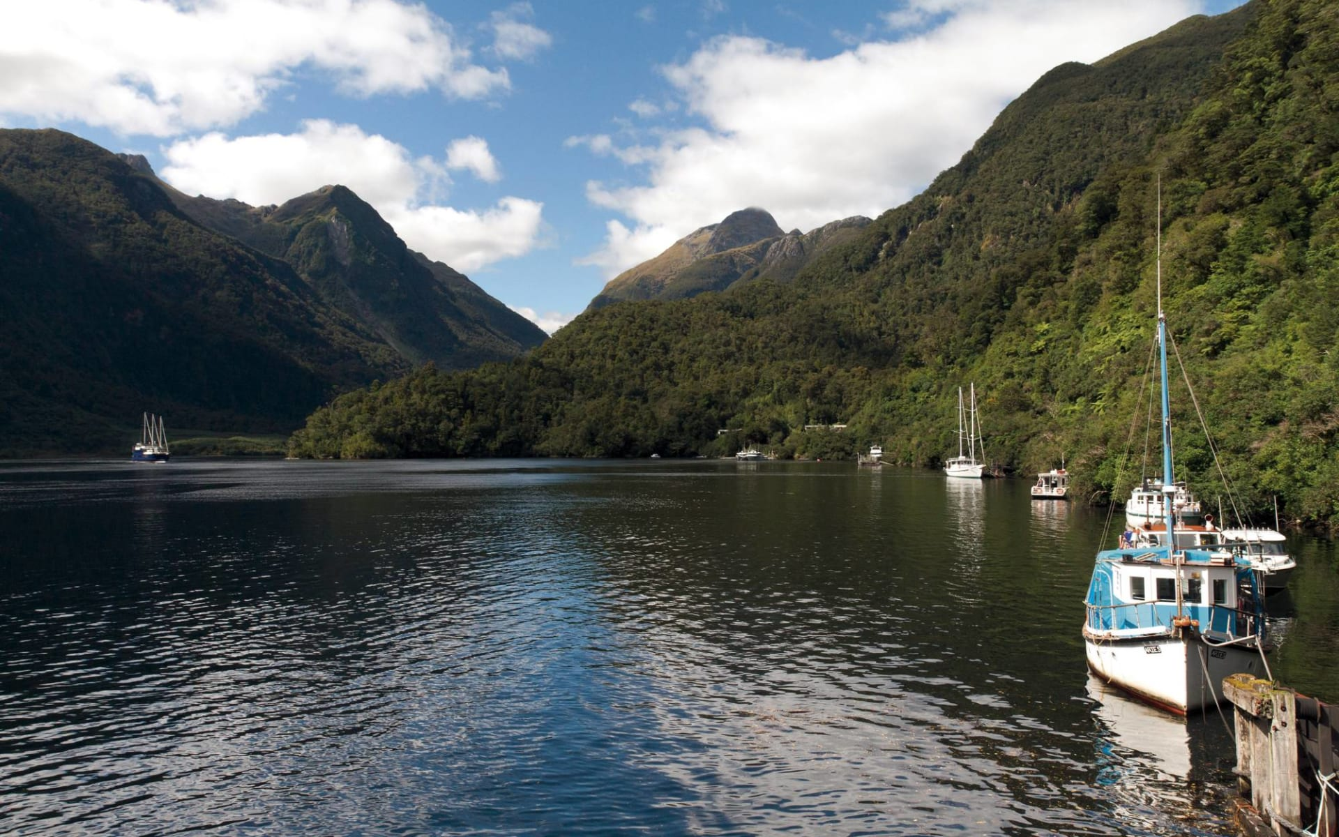 Doubtful Sound Overnight Cruise ab Queenstown: Neuseeland - Südinsel - Doubtful Sound