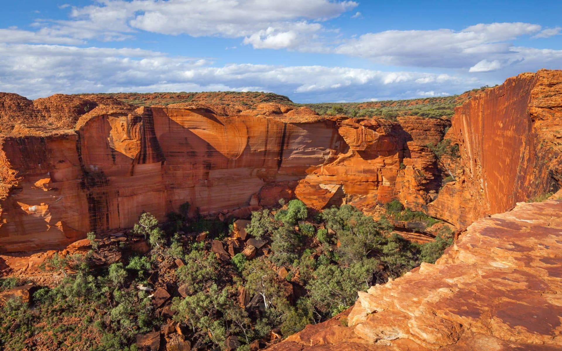 Best of OZ ab Sydney: Panoramasicht auf Kings Canyon