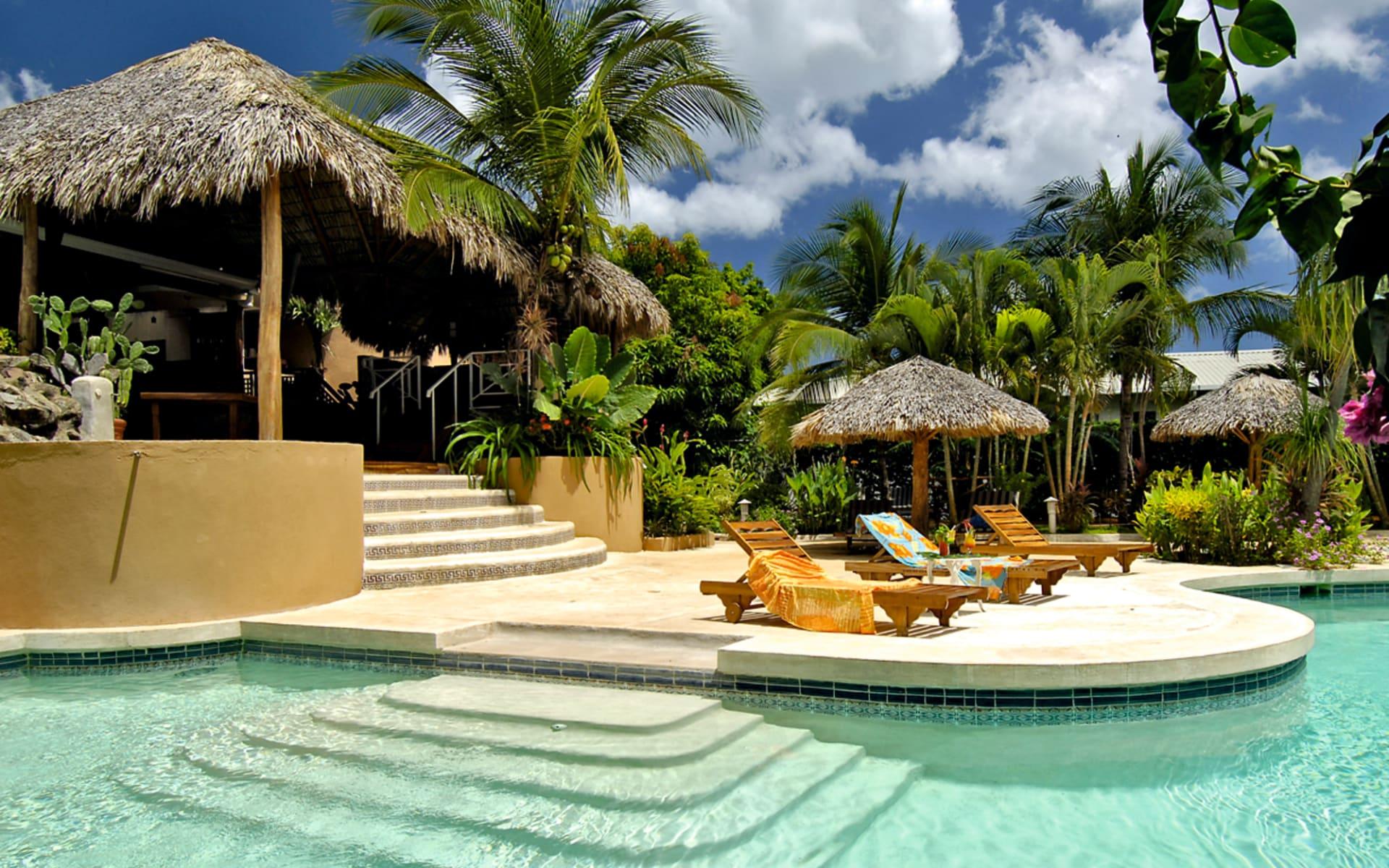 Jardin del Eden in Playa Tamarindo: pool jardin del eden pool liegen hütte