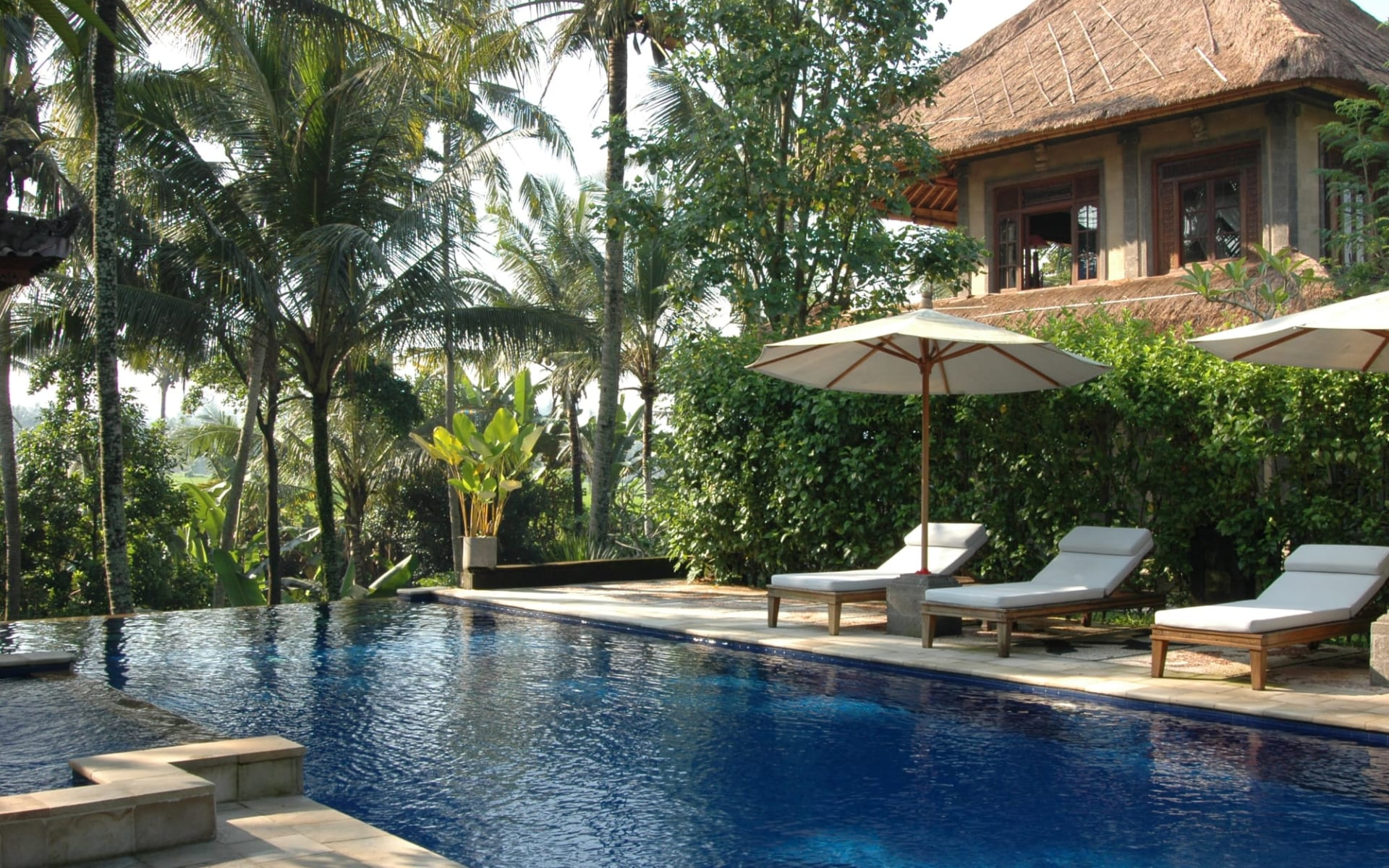 Alam Shanti in Ubud: Deluxe Ricefield View by Swimming Pool