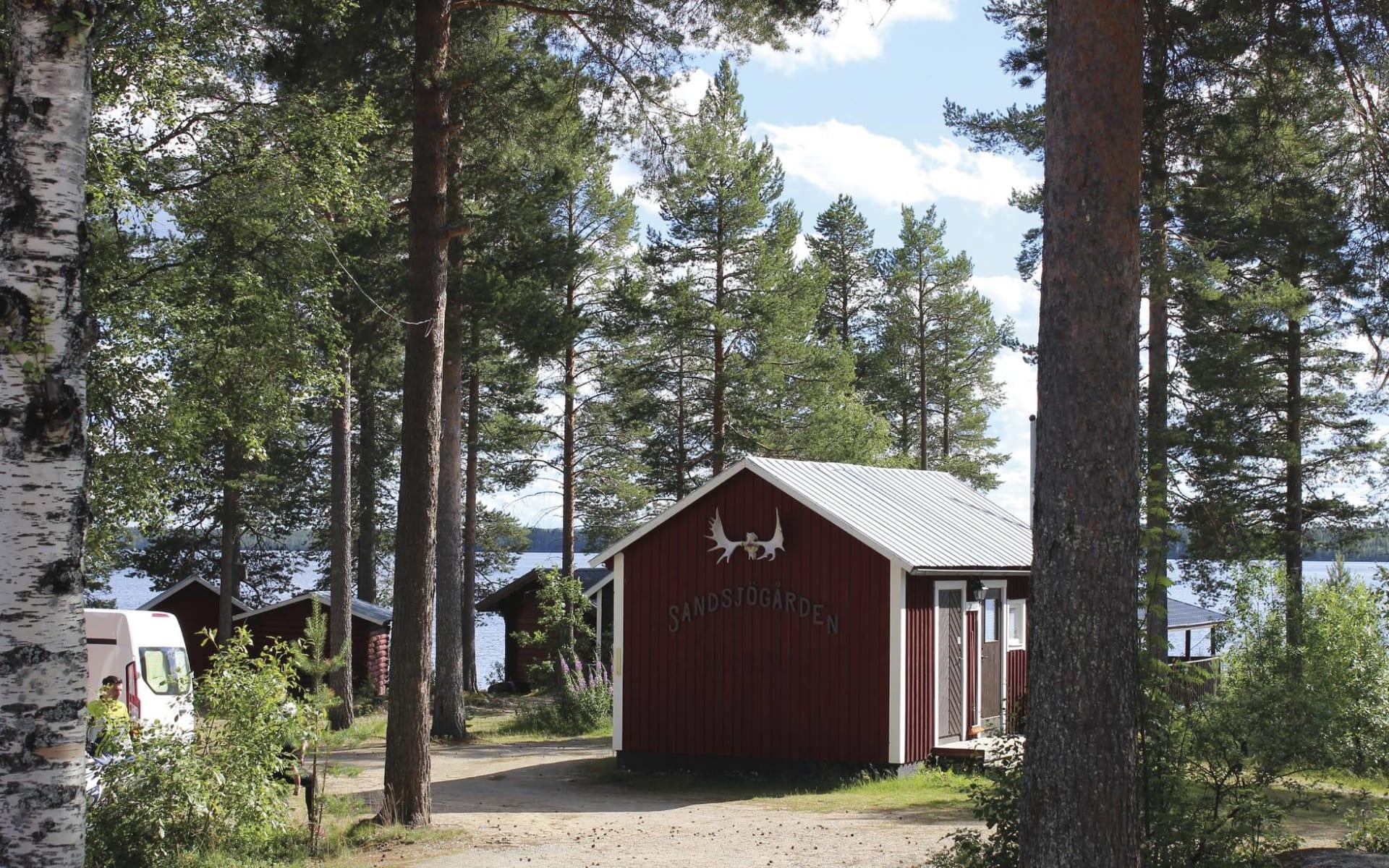 Sandsjögården - die letzte Wildnis Europas ab Umeå: Sandsjögarden
