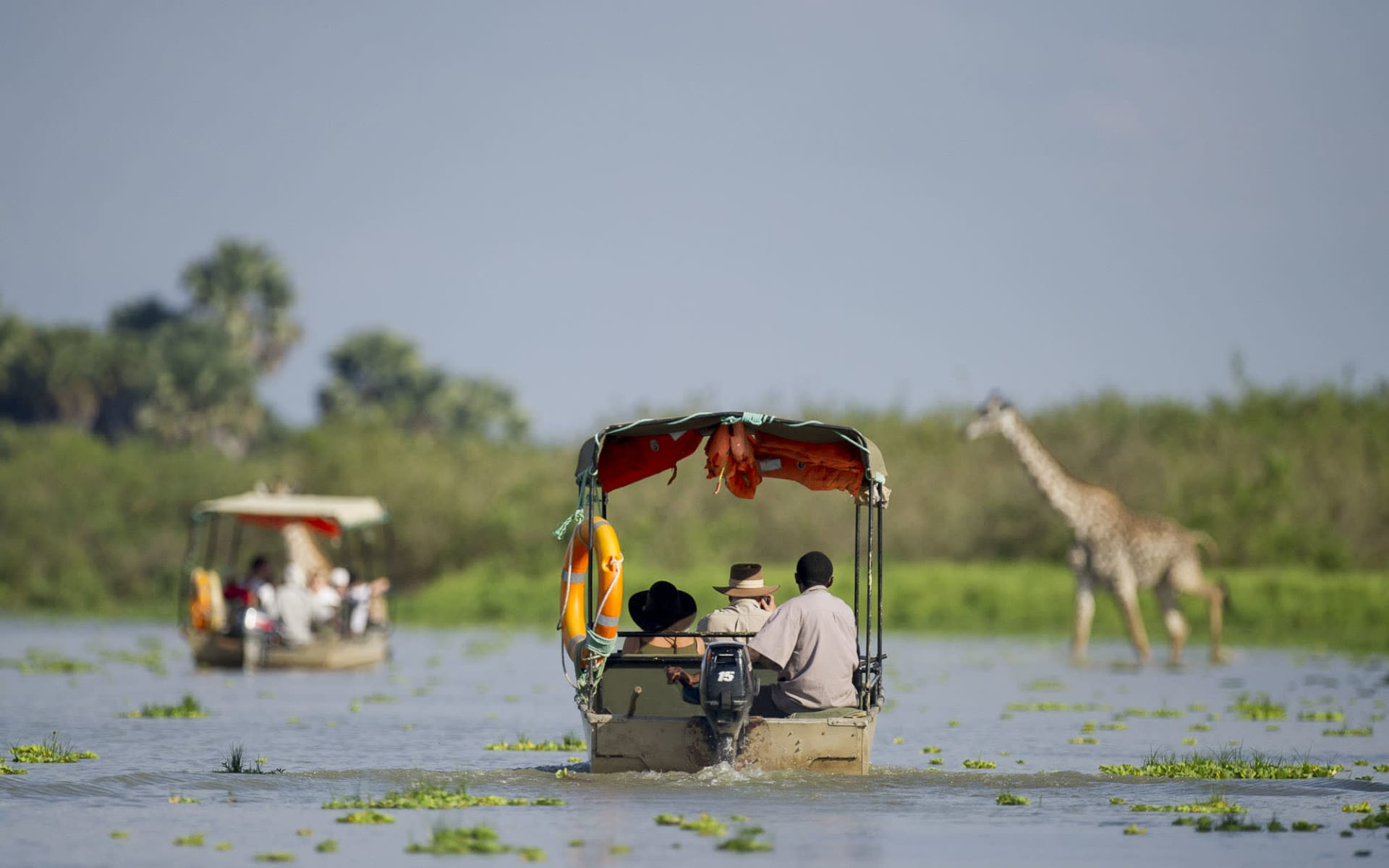 Ruaha - Selous Flugsafari ab Dar es Salaam: Selous