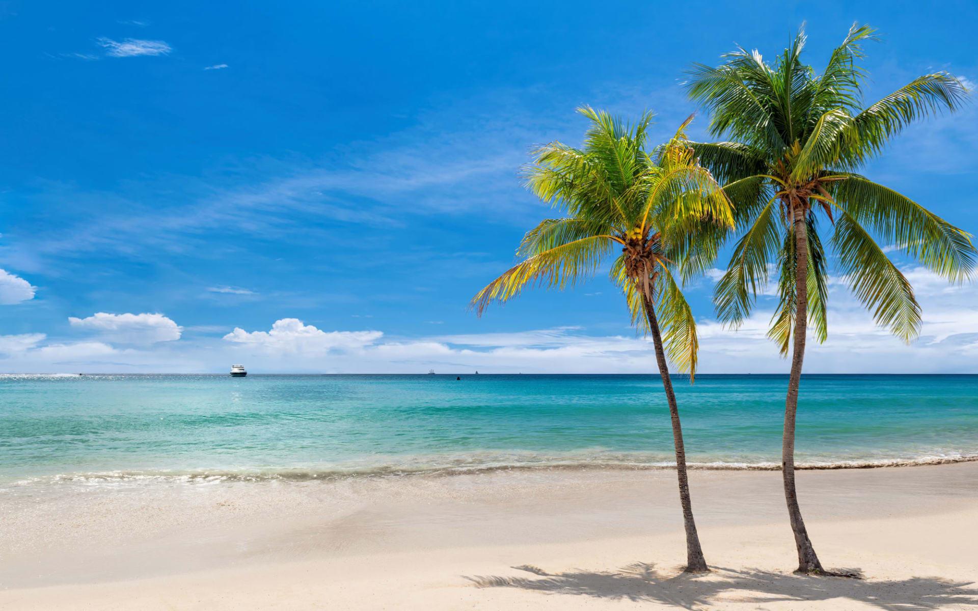 Jakes Hotel in Treasure Beach: shutterstock_1532445479_bea