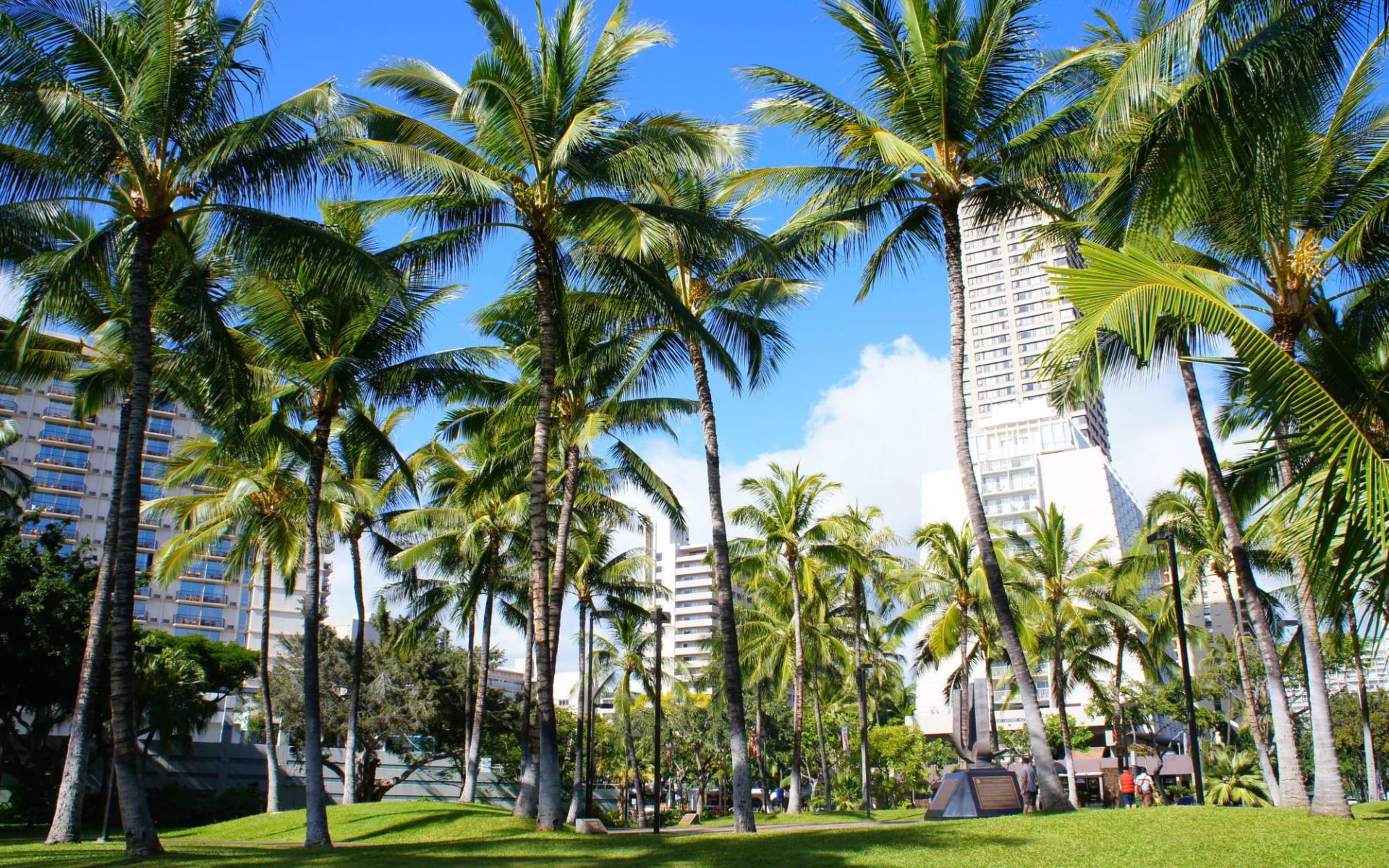 Aqua Bamboo Hotel in Honolulu - Oahu: shutterstock_575340022_oahu