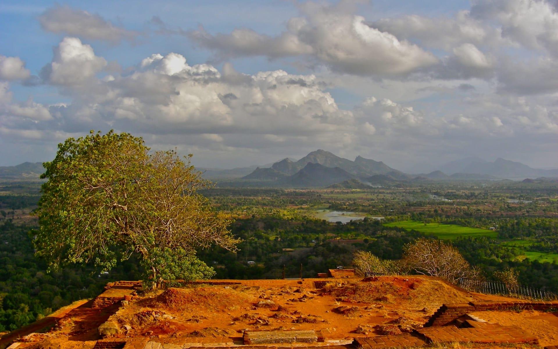 Sri Lanka Kompakt ab Colombo: Sigiriya: View from the top