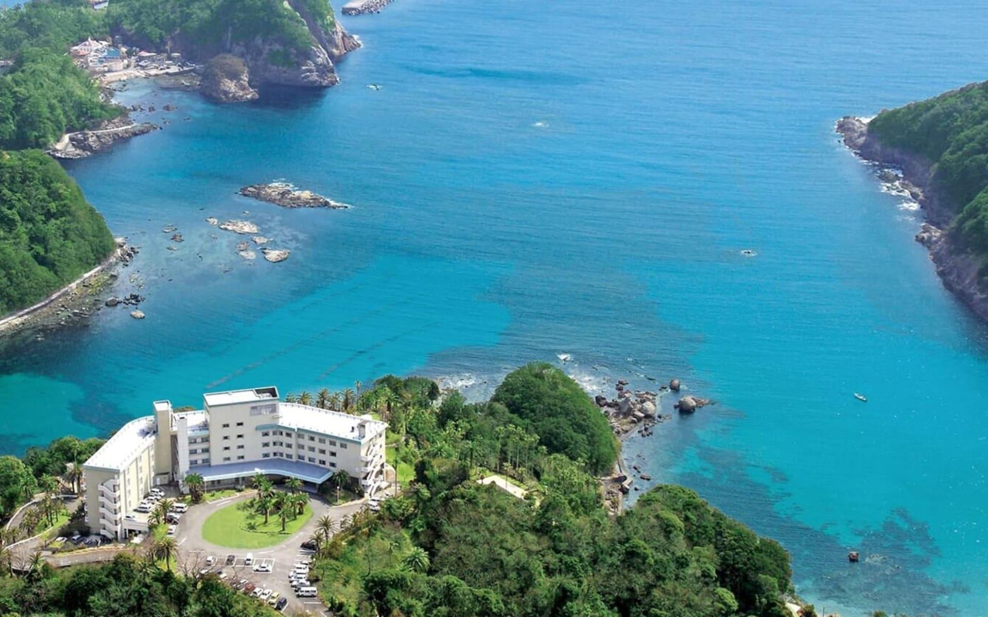 Onsen & Beach Package auf der Izu Halbinsel ab Tokio: top_images_01