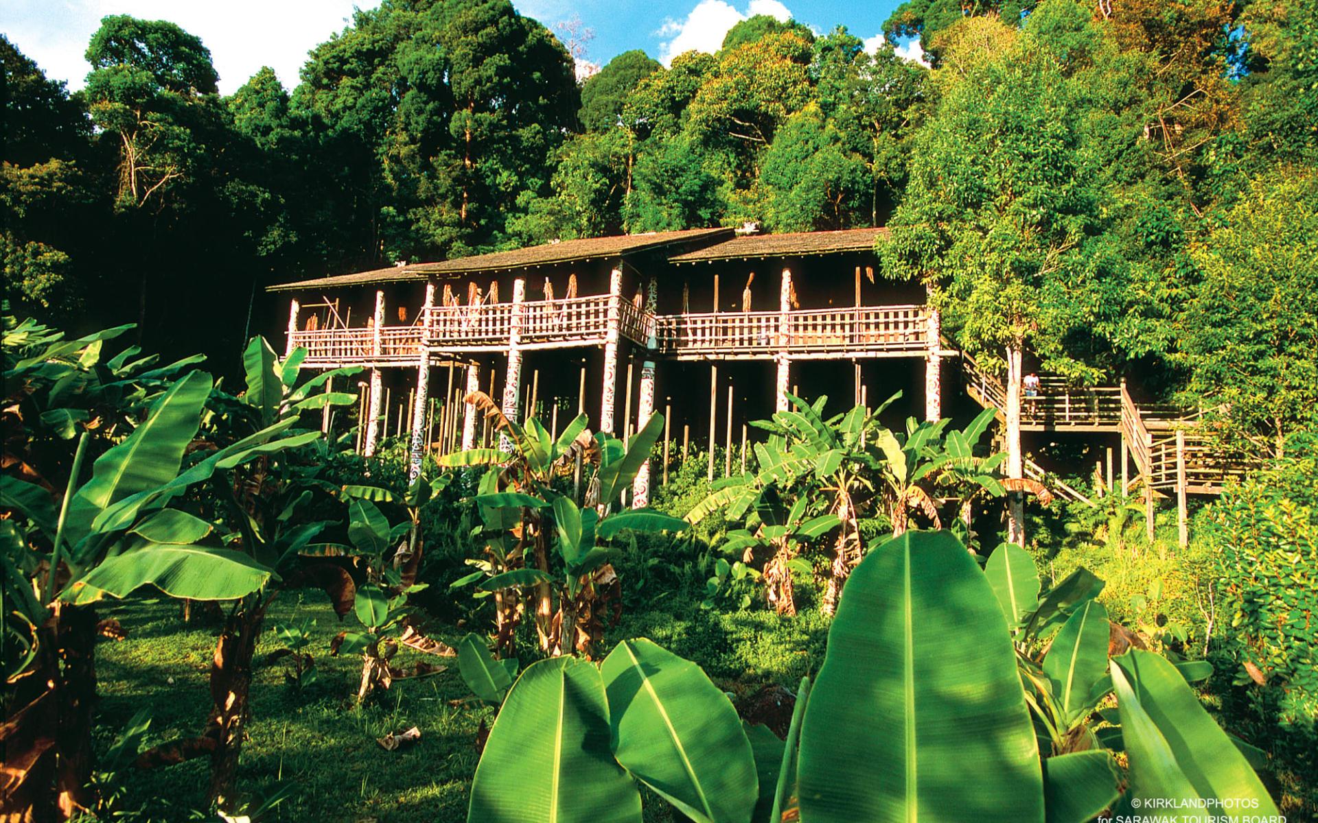 Höhepunkte Borneos Option Longhouse ab Kuching: Traditional Longhouse