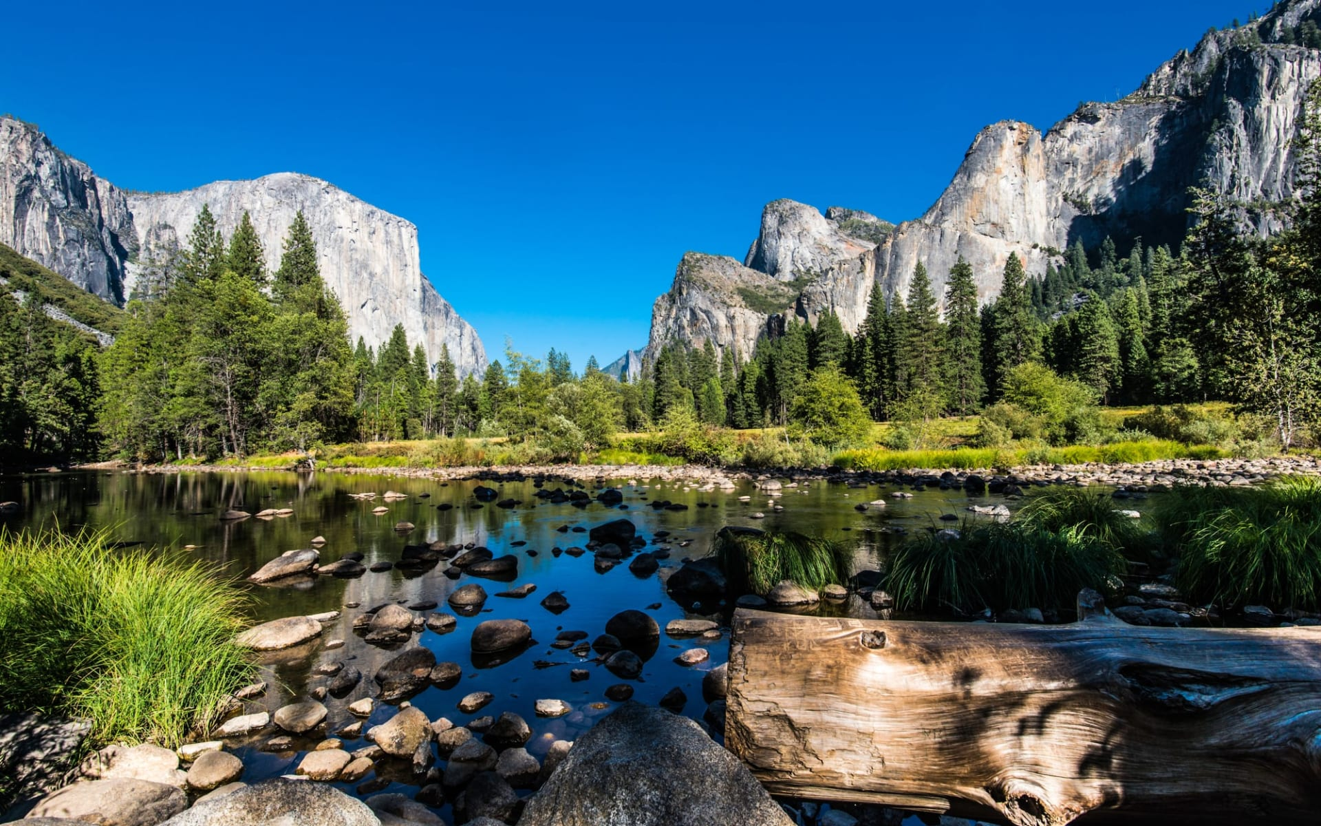 Nationalpark Wanderer ab San Francisco: Yosemite Valley