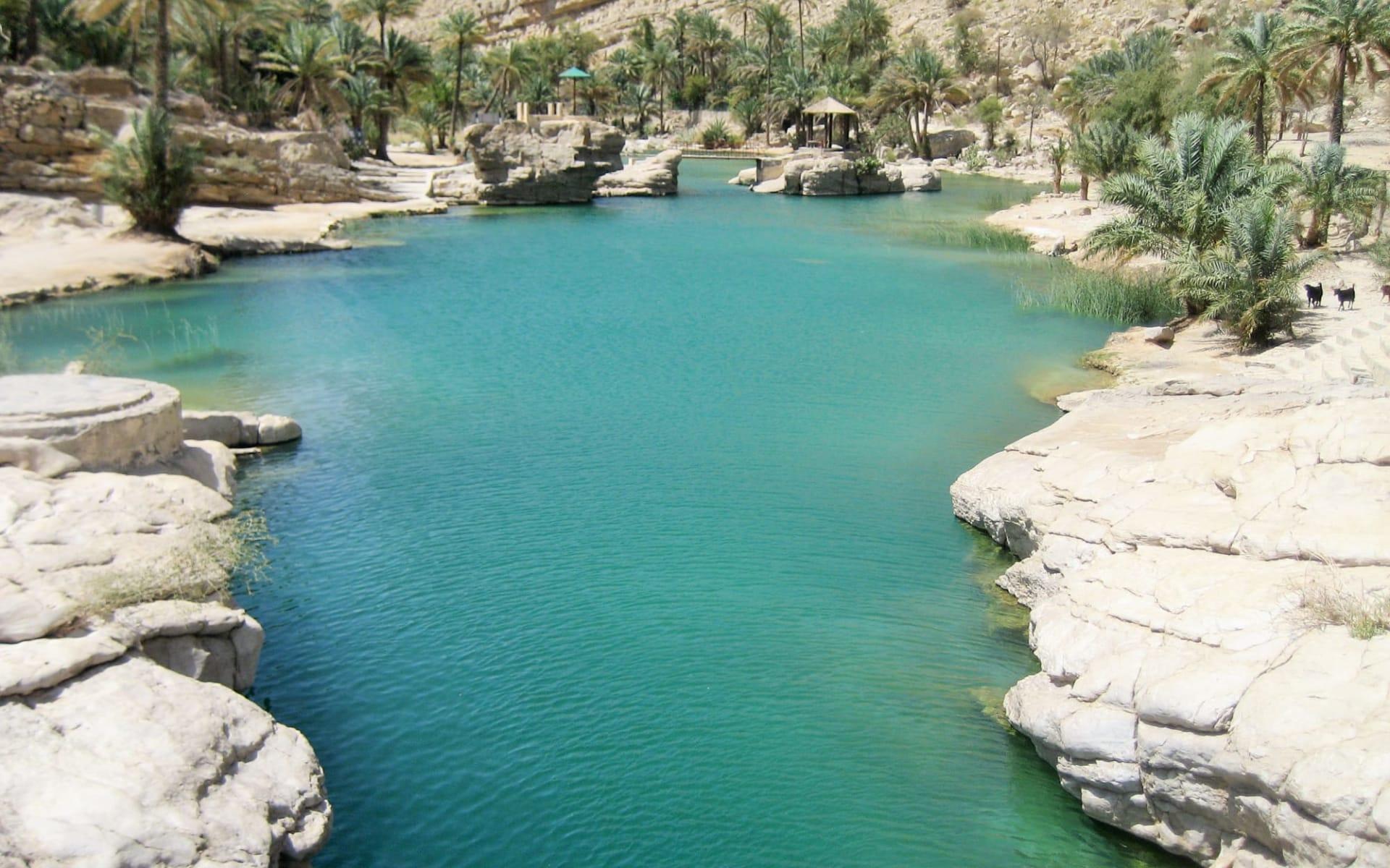 Grosse Oman Rundreise ab Muscat: Wadi Bani Khalid