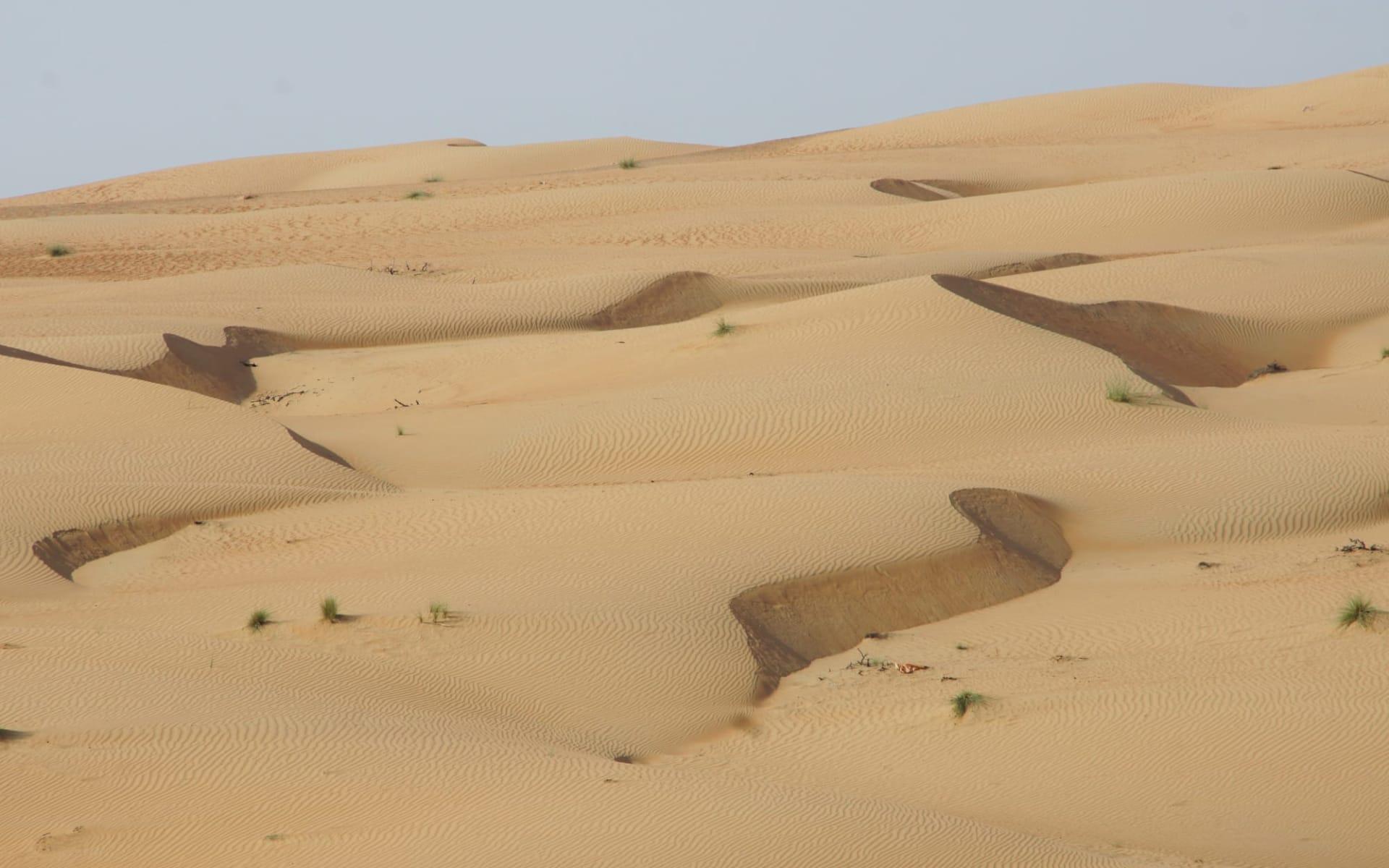 Auf den Spuren der alten Weihrauchroute ab Salalah: Wahiba Sands Oman