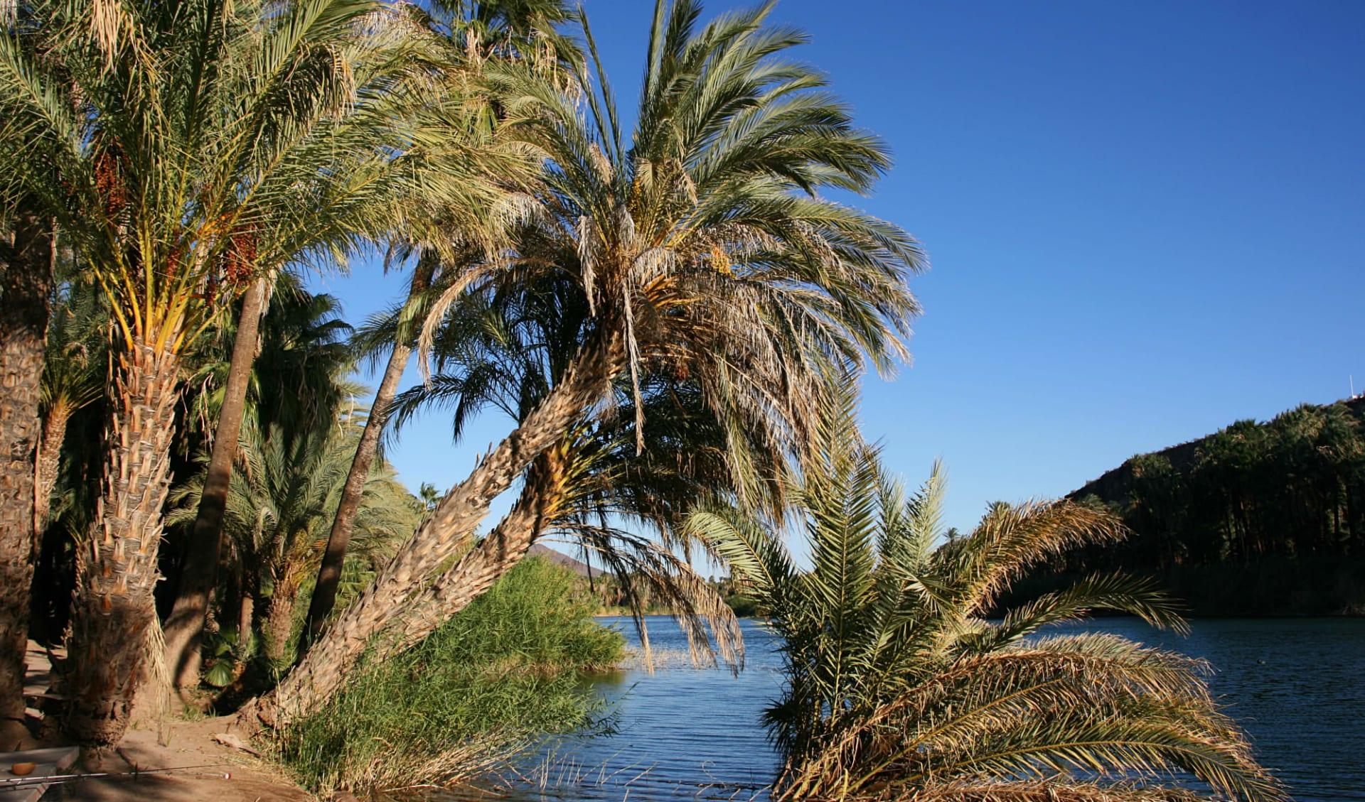 Gruppenreise Baja California ab La Paz: