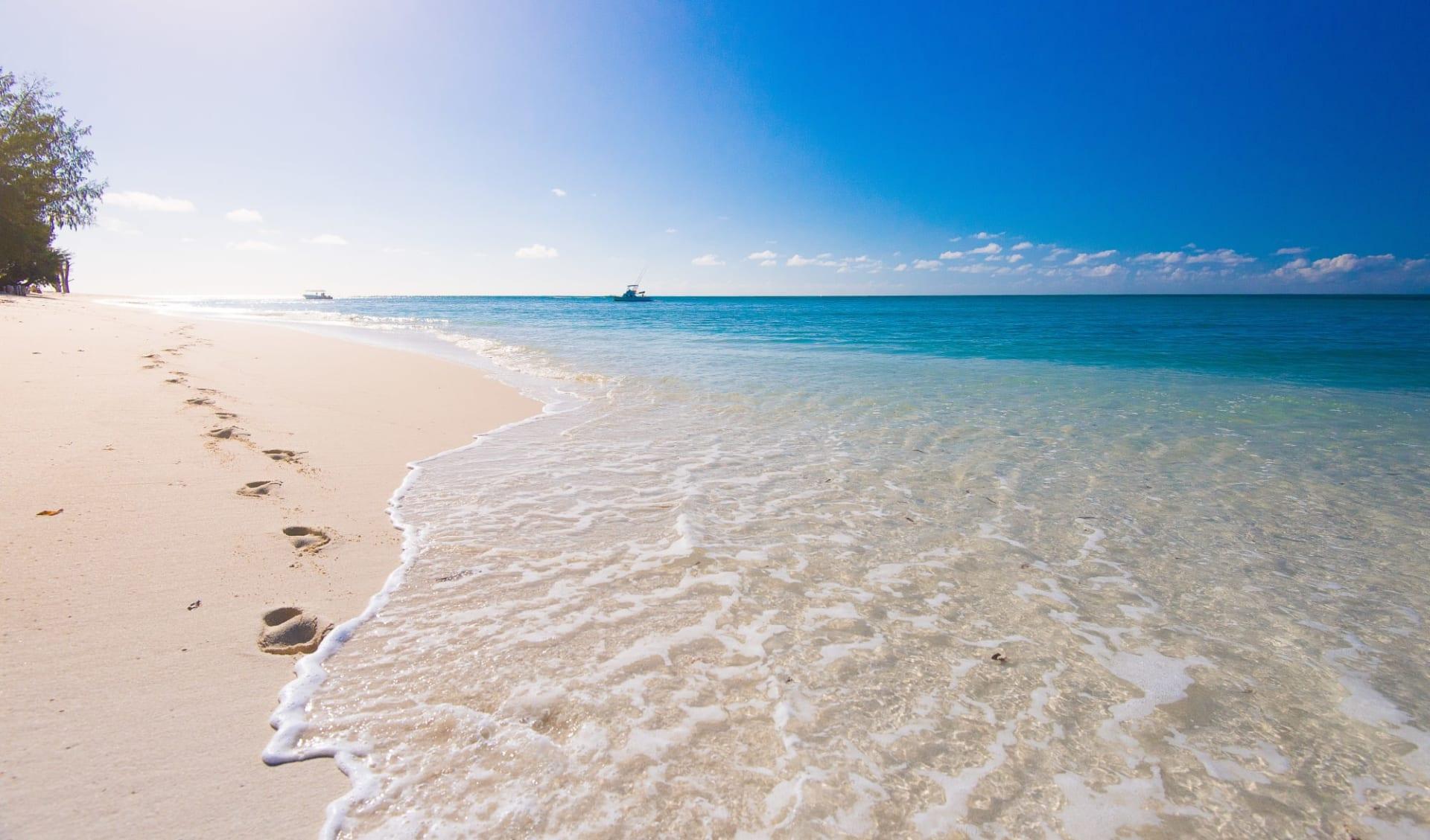 Denis Private Island in Denis Island:  beach: