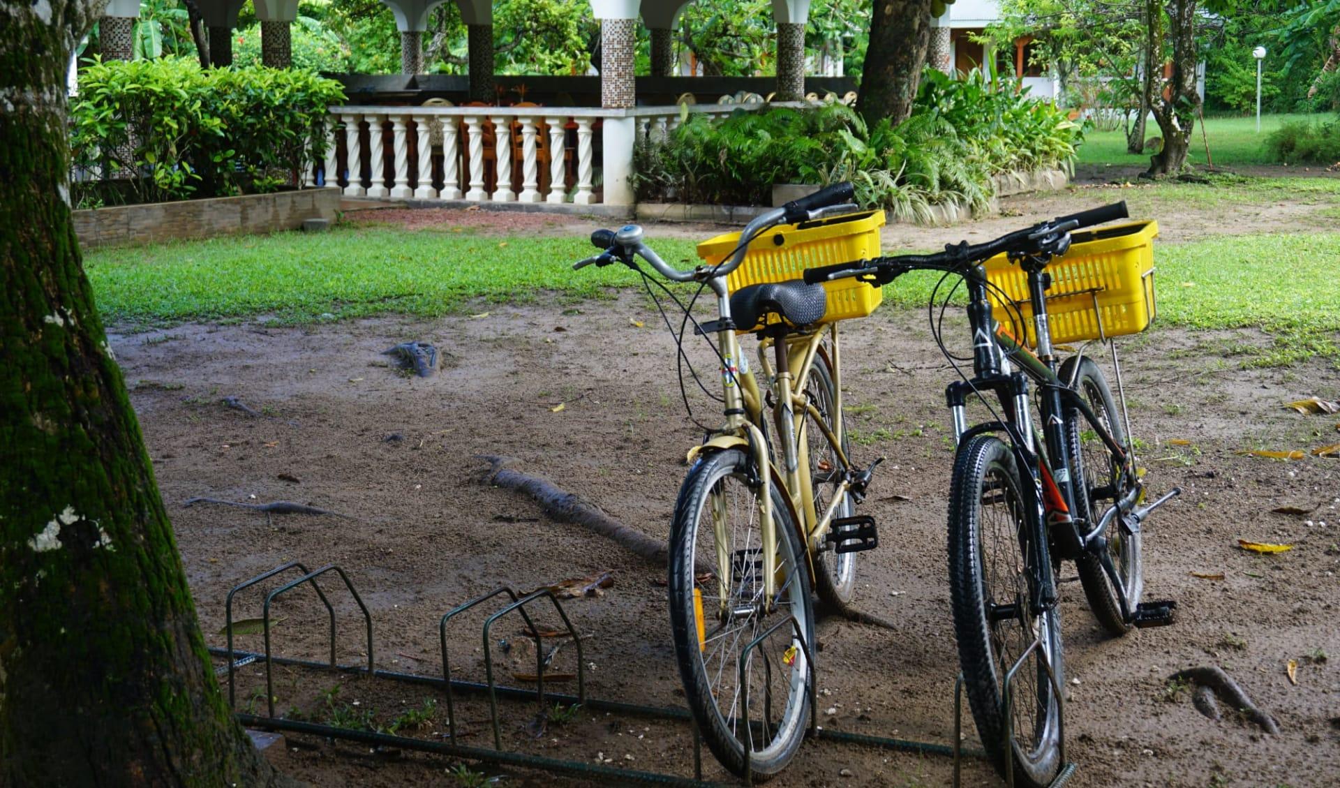 Chalet Bamboo Vert in La Digue:  bikes chalet Bamboo vert