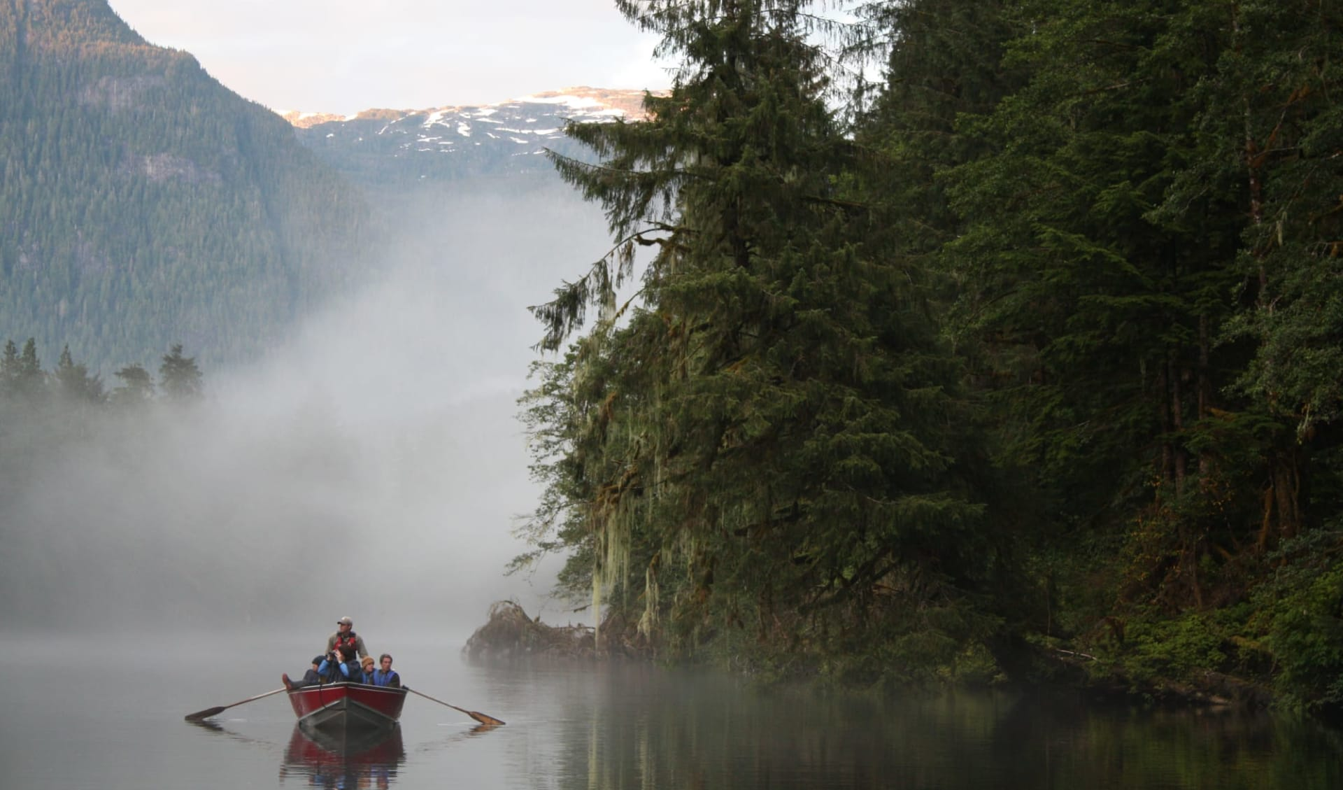 Bärenbeobachtung Great Bear Lodge 7 Tage ab Port Hardy: activities: Great Bear Lodge - Bootstour