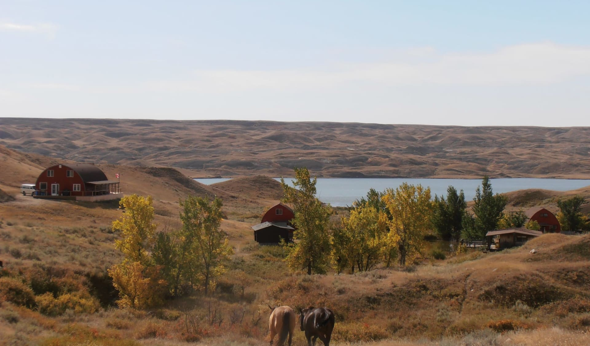 La Reata Ranch in Kyle: _La Reata Ranch - Natur