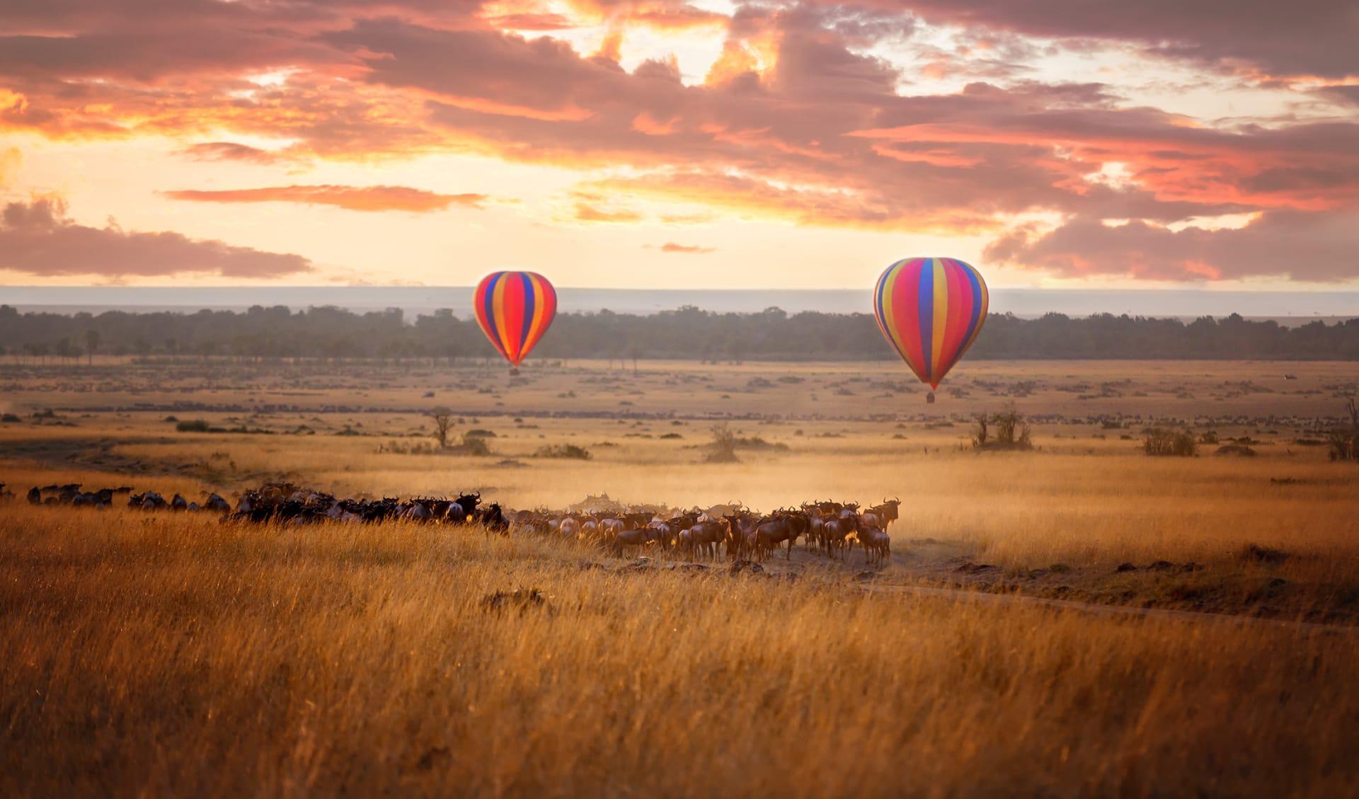 Flitterwochen, Kenia