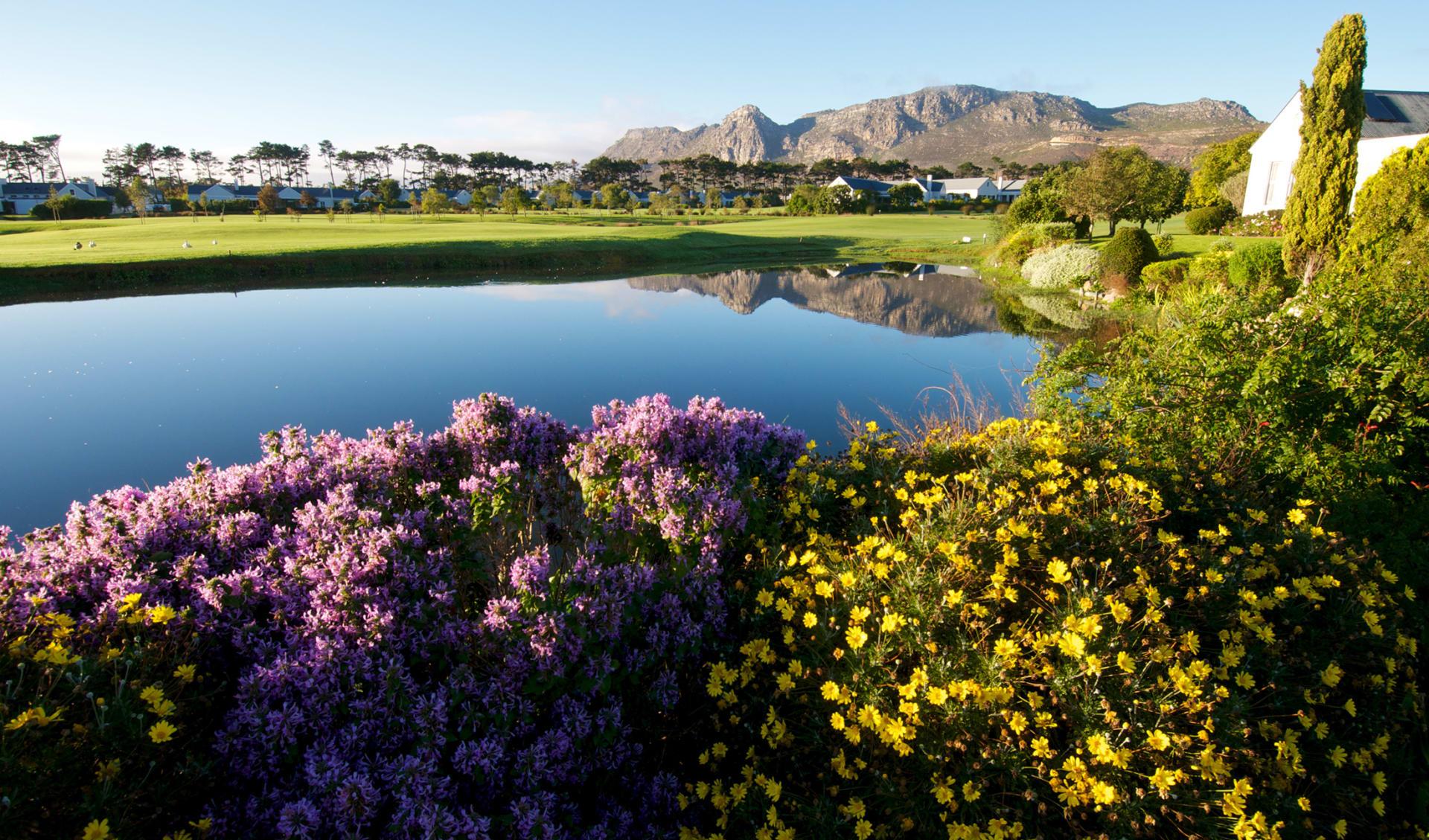 Golf, Südafrika