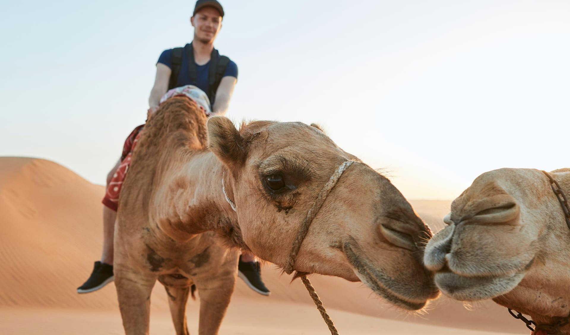 Wüstenerlebnisse, Oman