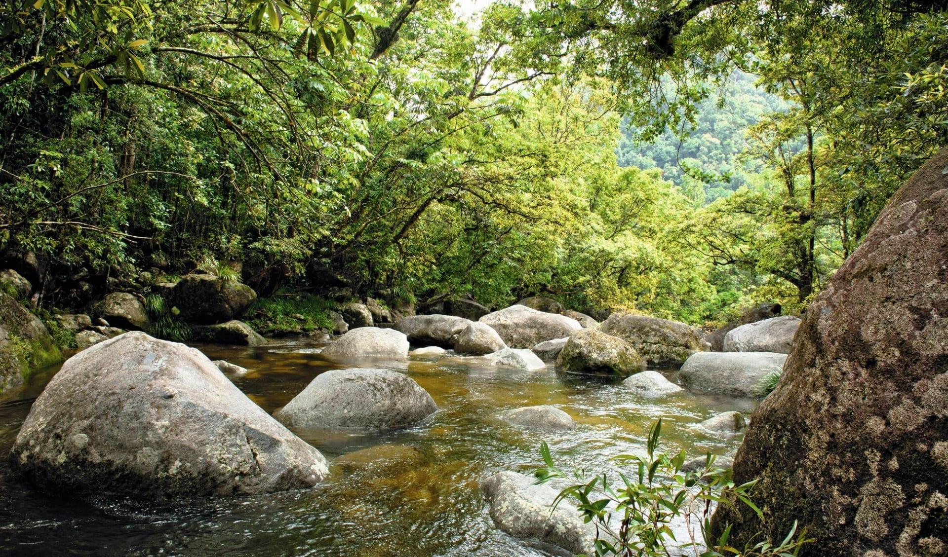 Cape York Safari ab Cairns: Australia - Queensland - Bach