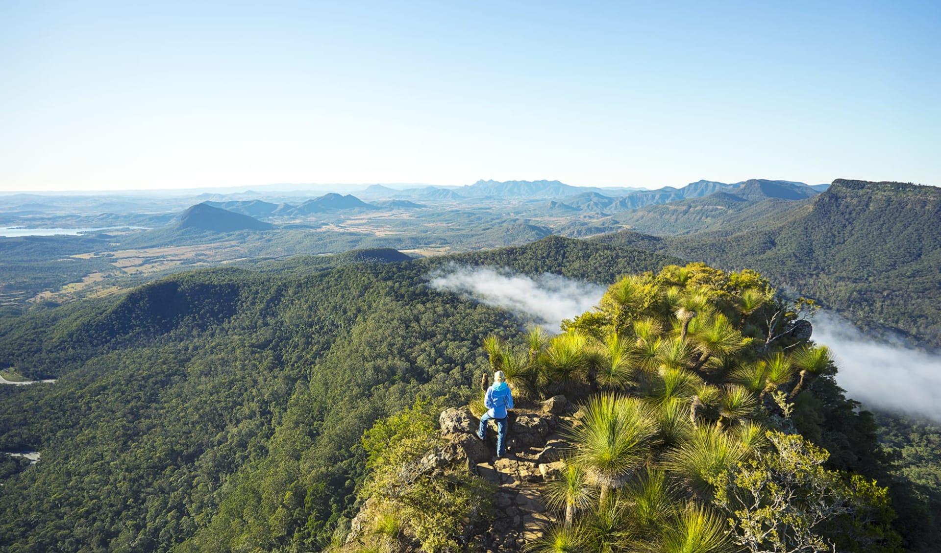Scenic Rim Trail ab Brisbane: Australia - Queensland - Scenic Rim Trail - Bergpanorama