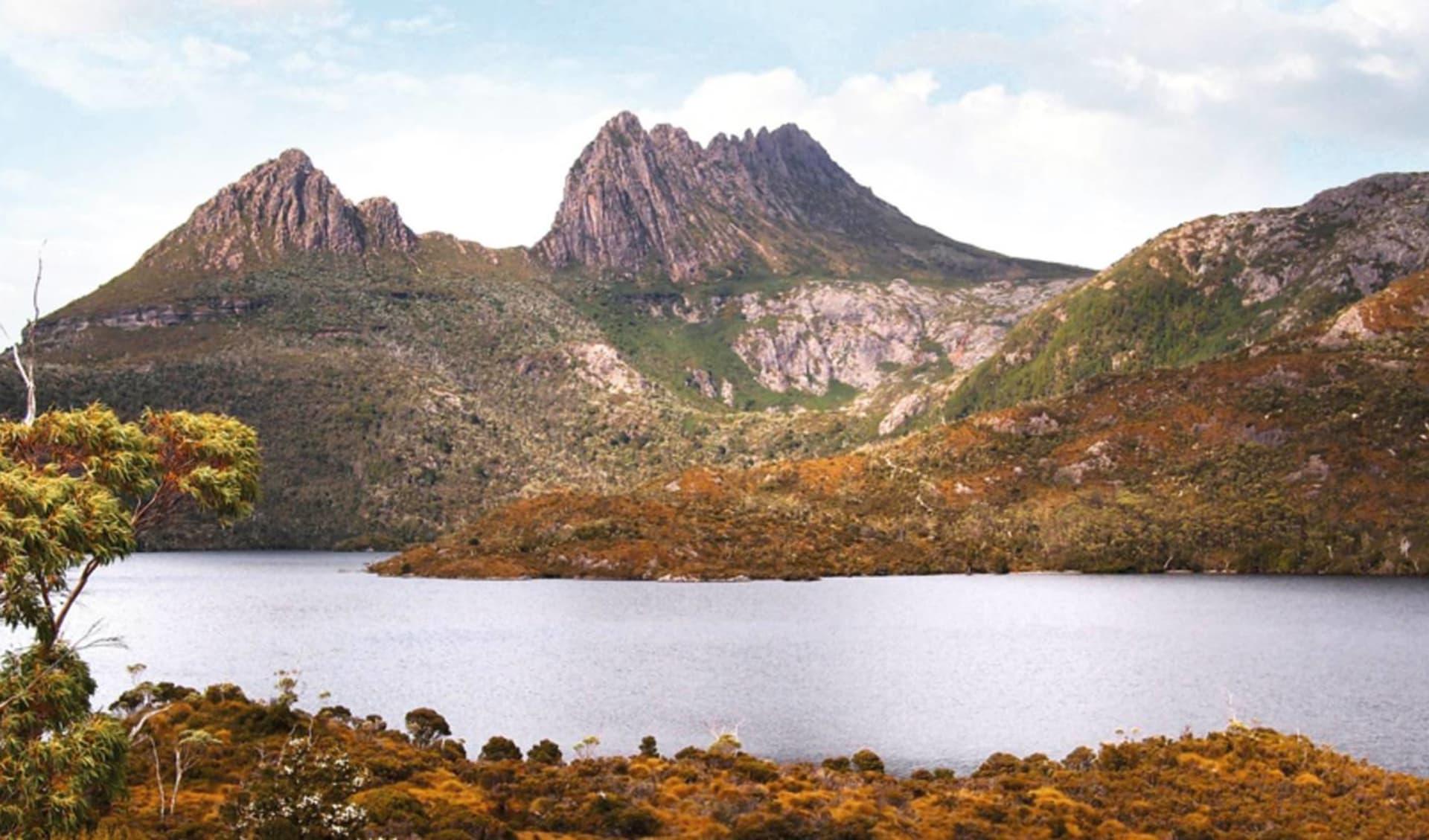 Tasmanian Wonderland ab Hobart: Australia - Tasmania - Cradle Mountain NP - Bergsee