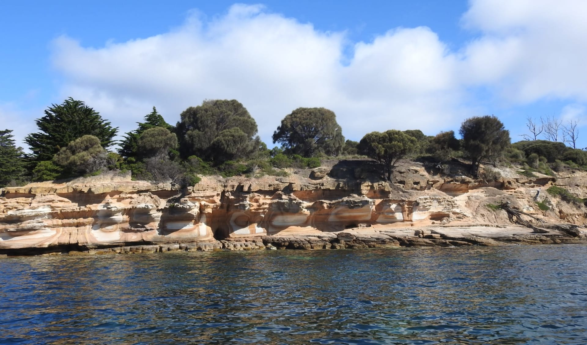 Coral Expeditions / Tasmanien ab Hobart: Australia - Tasmania - Maria Island - Coral Expeditions