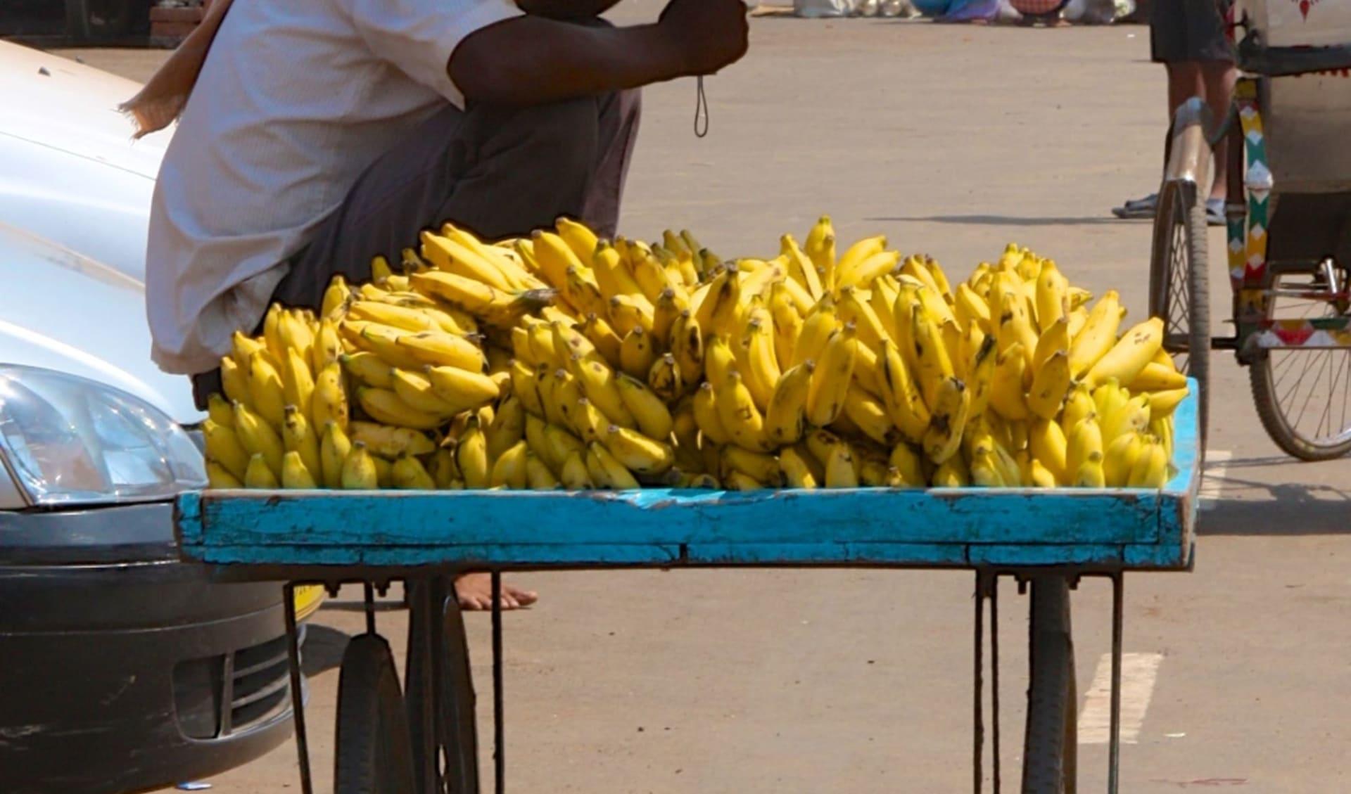 Die Tempel von Odisha ab Bhubaneswar: Banana Seller in Puri