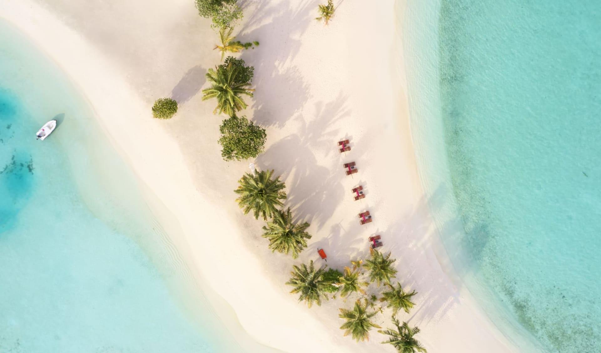 Sun Siyam Vilu Reef Maldives in Dhaalu-Atoll: