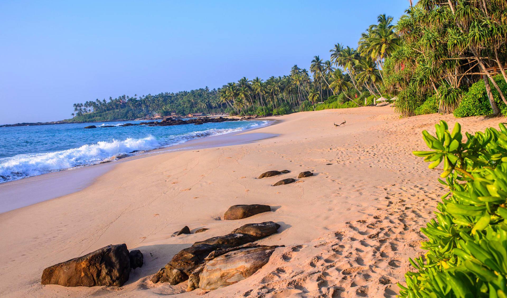 Anantara Peace Haven Tangalle Resort: Beach