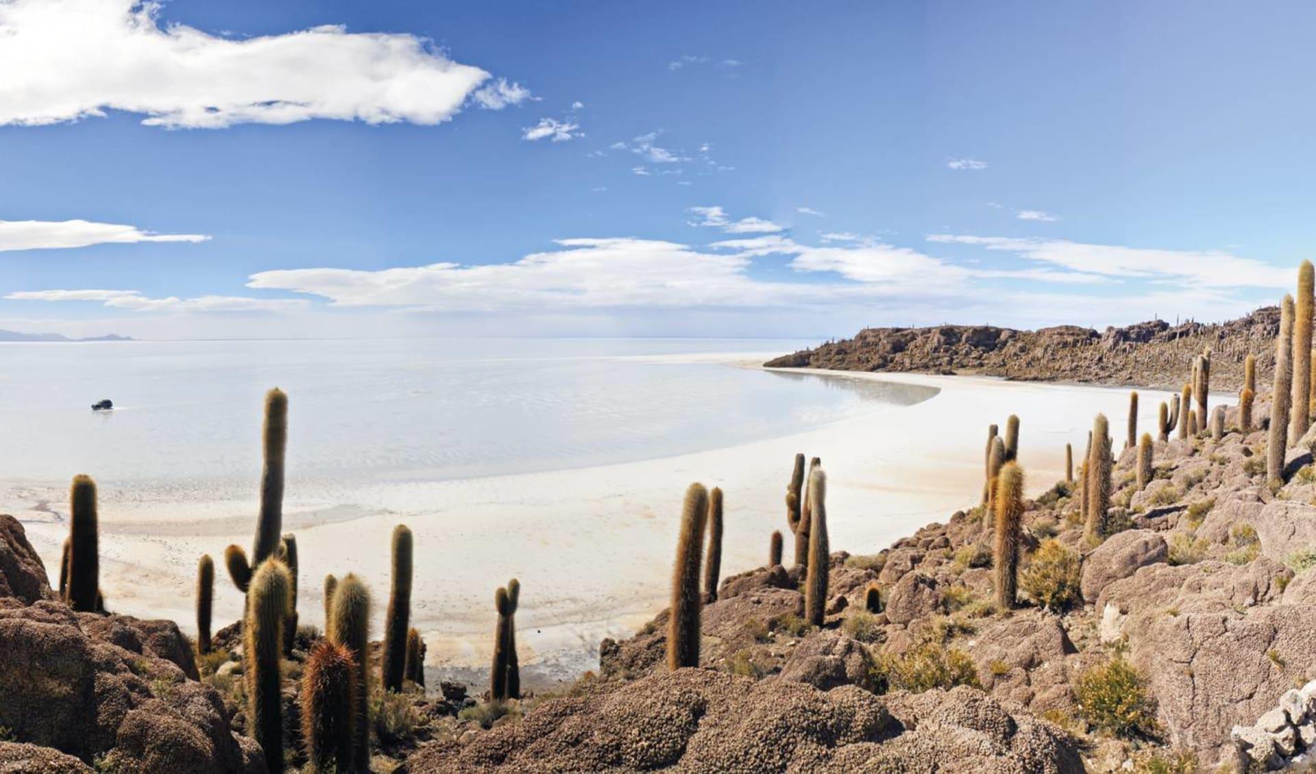 Gruppenreise Imperio Inca ab Lima: Bolivien - Salar de Uyuni - Insel mit Kakteen