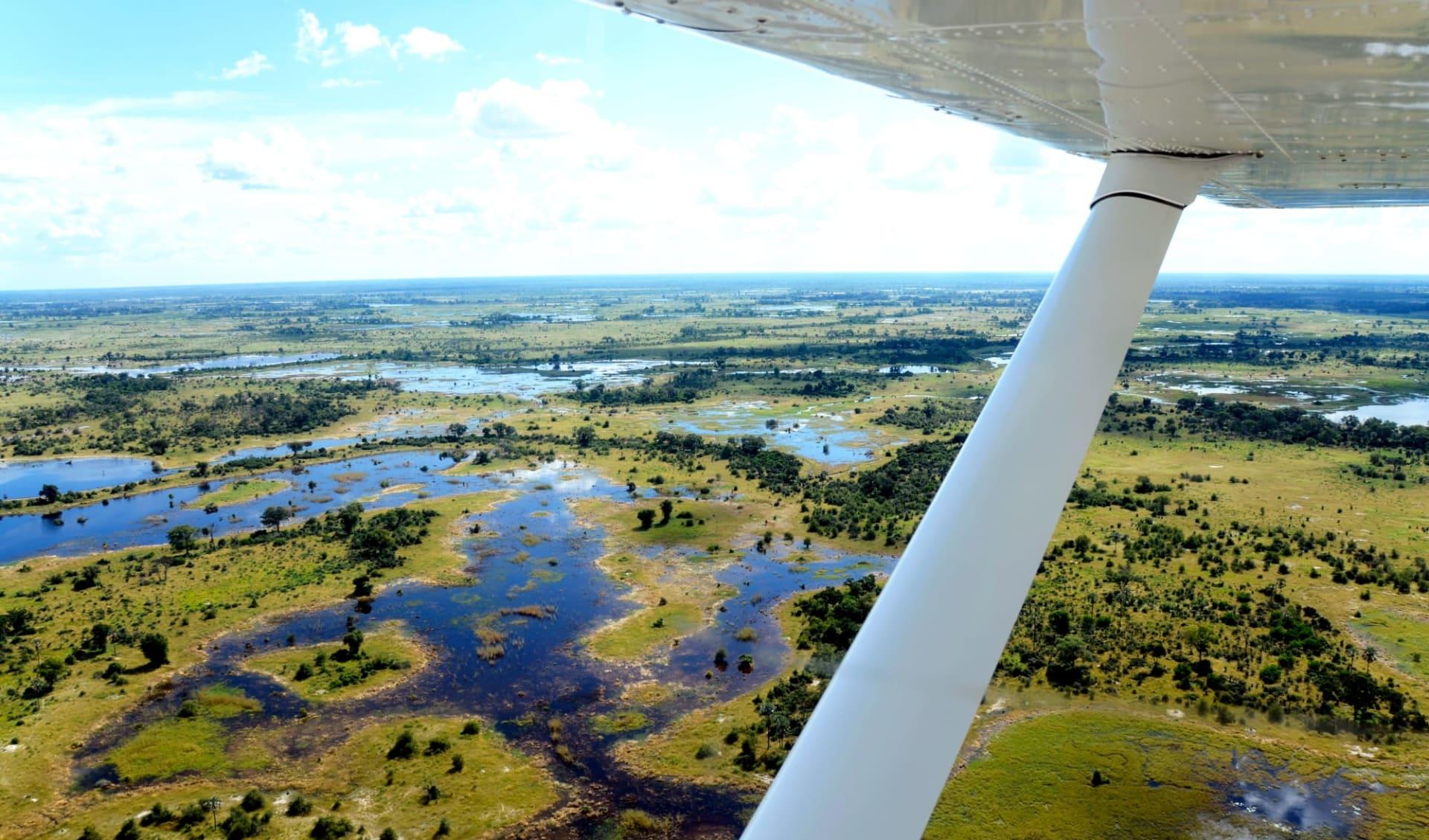 Botswana Royal ab Linyanti Region: Botswana - Okavango Delta - Aussicht Flugzeug