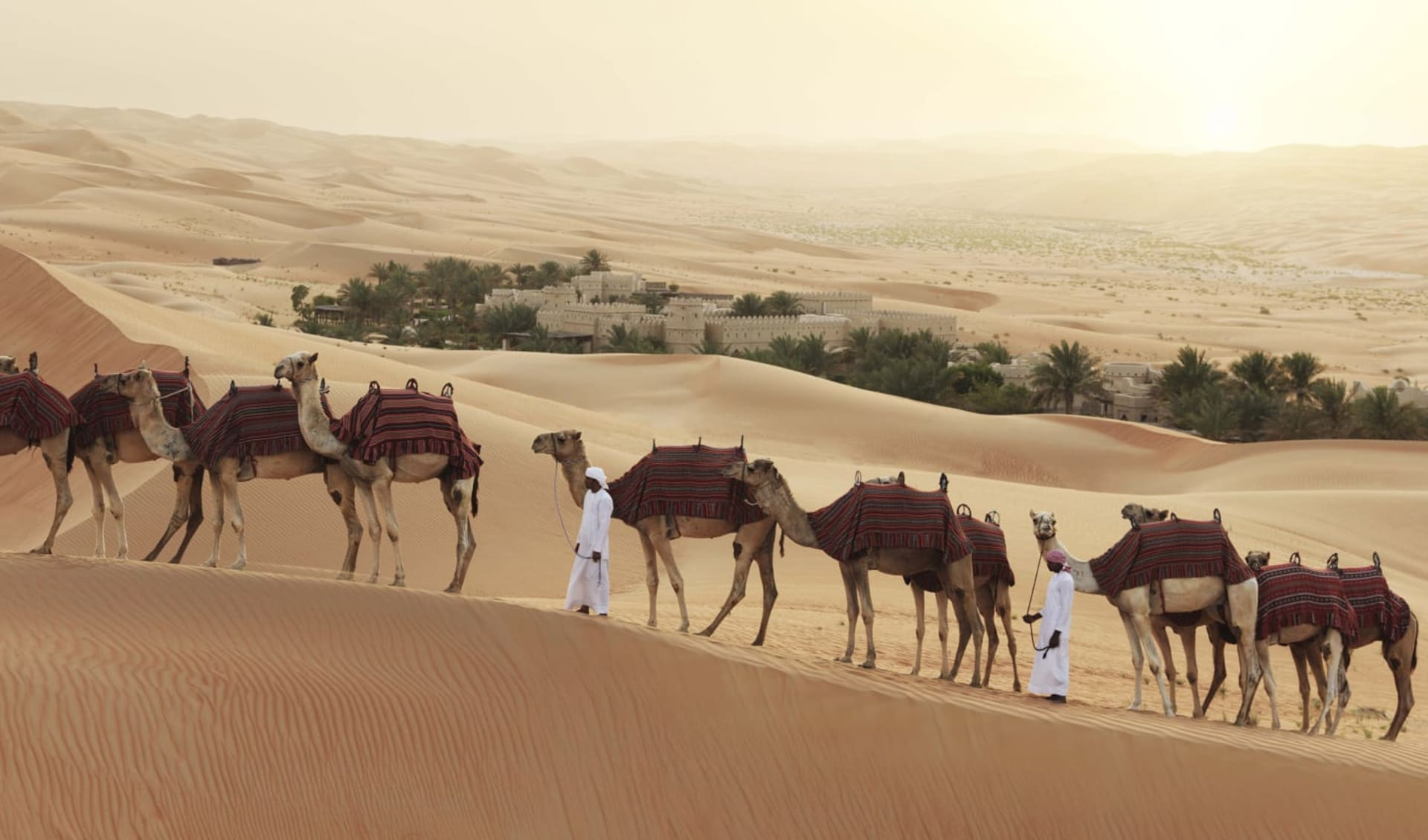 Anantara Qasr Al Sarab Desert Resort in Liwa: