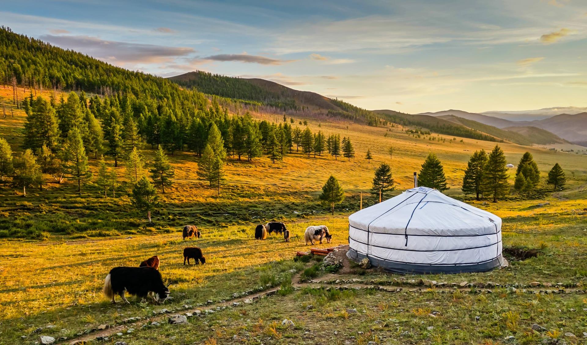 Sonnenuntergang über dem Mongolischen Tal