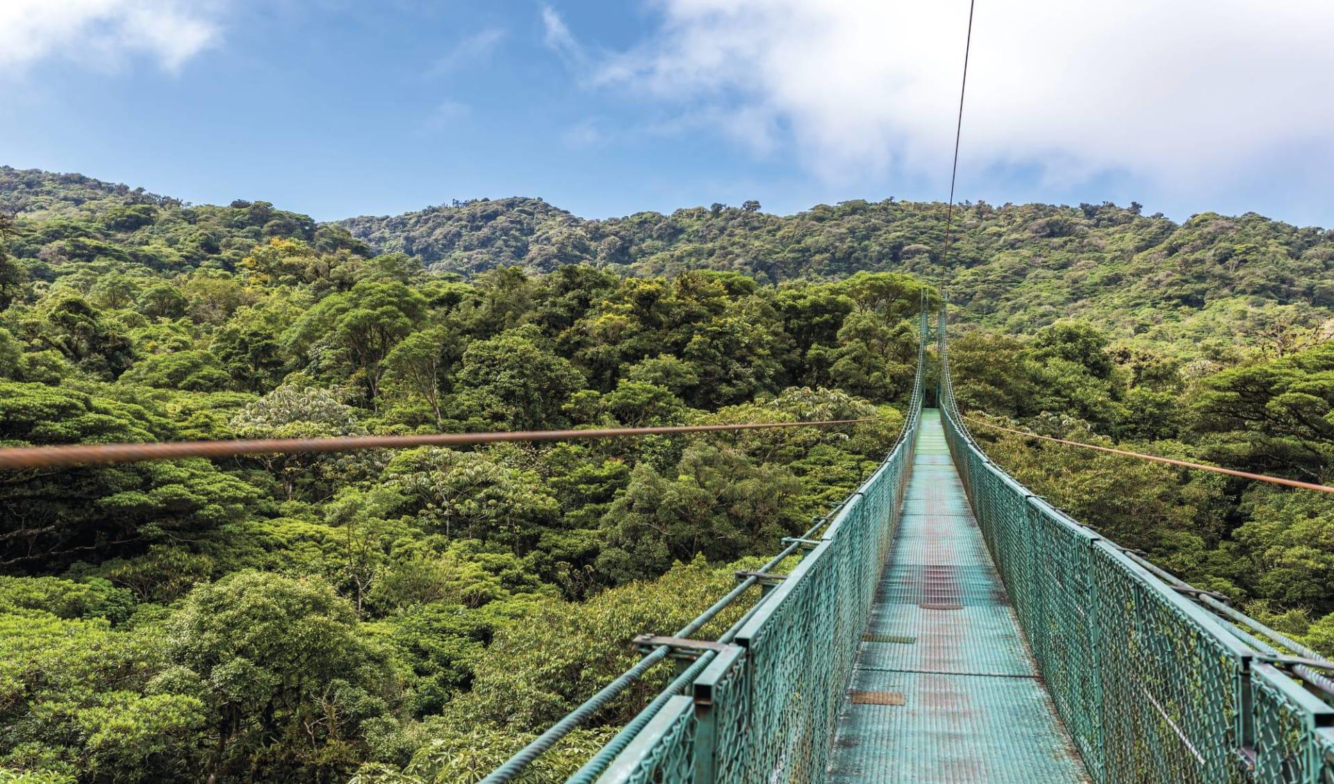 Mietwagenreise Costa Rica Total ab San José City: Costa Rica - Monteverde - Hängebrücke
