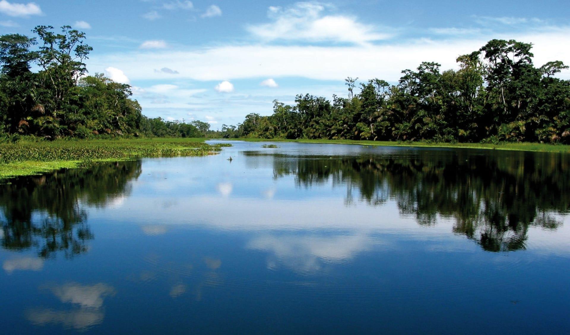 Privatreise Höhepunkte Costa Ricas ab San José City: Costa Rica - Tortuguero Nationalpark - Flussbett