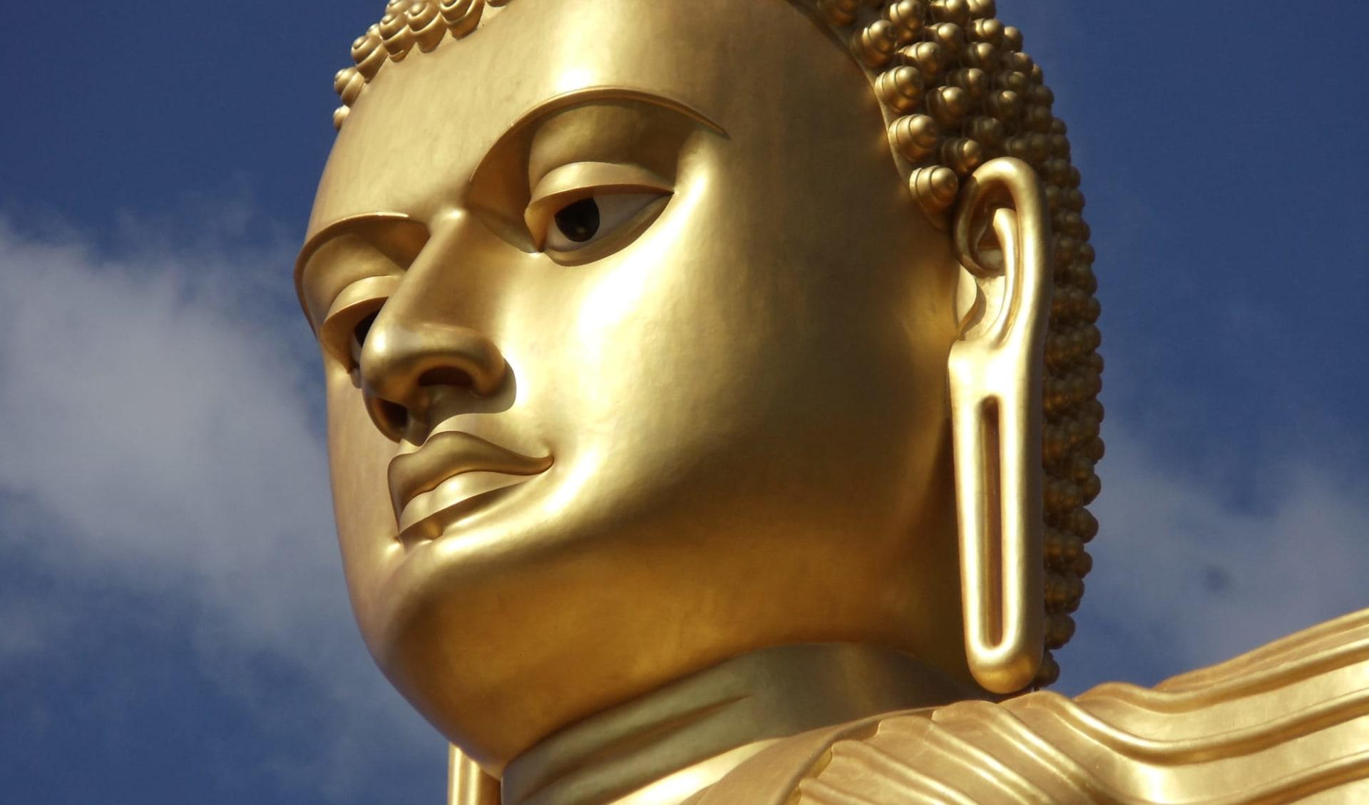 Sri Lanka Kompakt ab Colombo: Dambulla: Golden Buddha