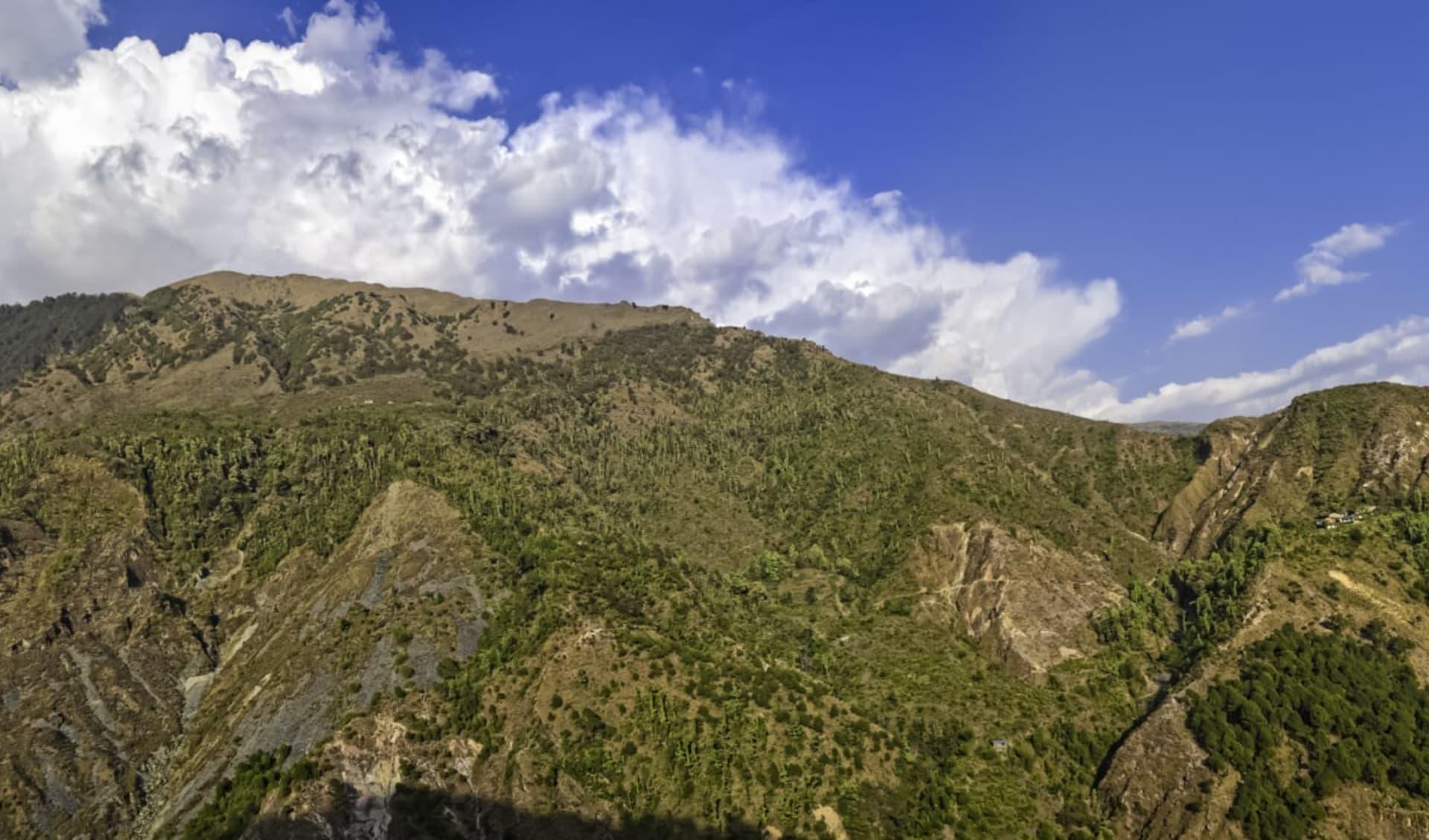 Himachal Pradesh & Ladakh ab Delhi: Dharamsala: Mountain