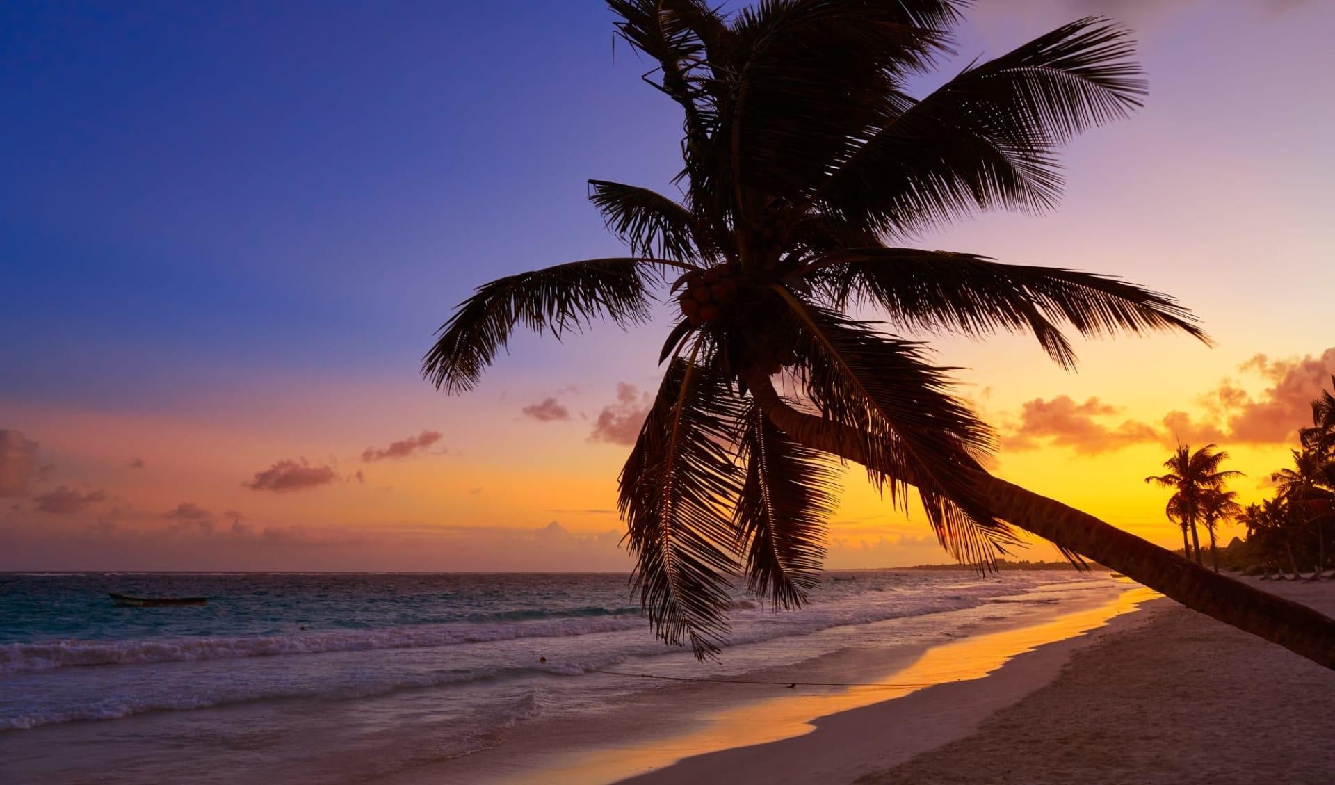 Höhepunkte Dominikanische Republik ab Santo Domingo: Dom.Rep._Beach