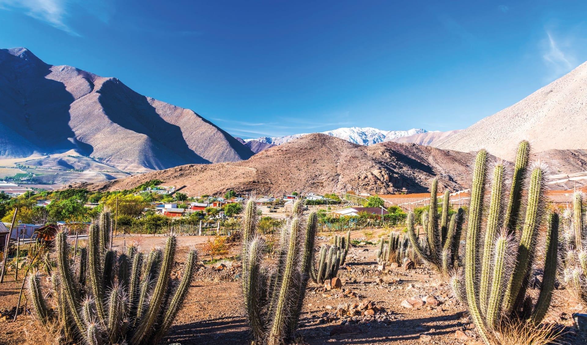 Der kleine Norden ab La Serena: Elqui Tal