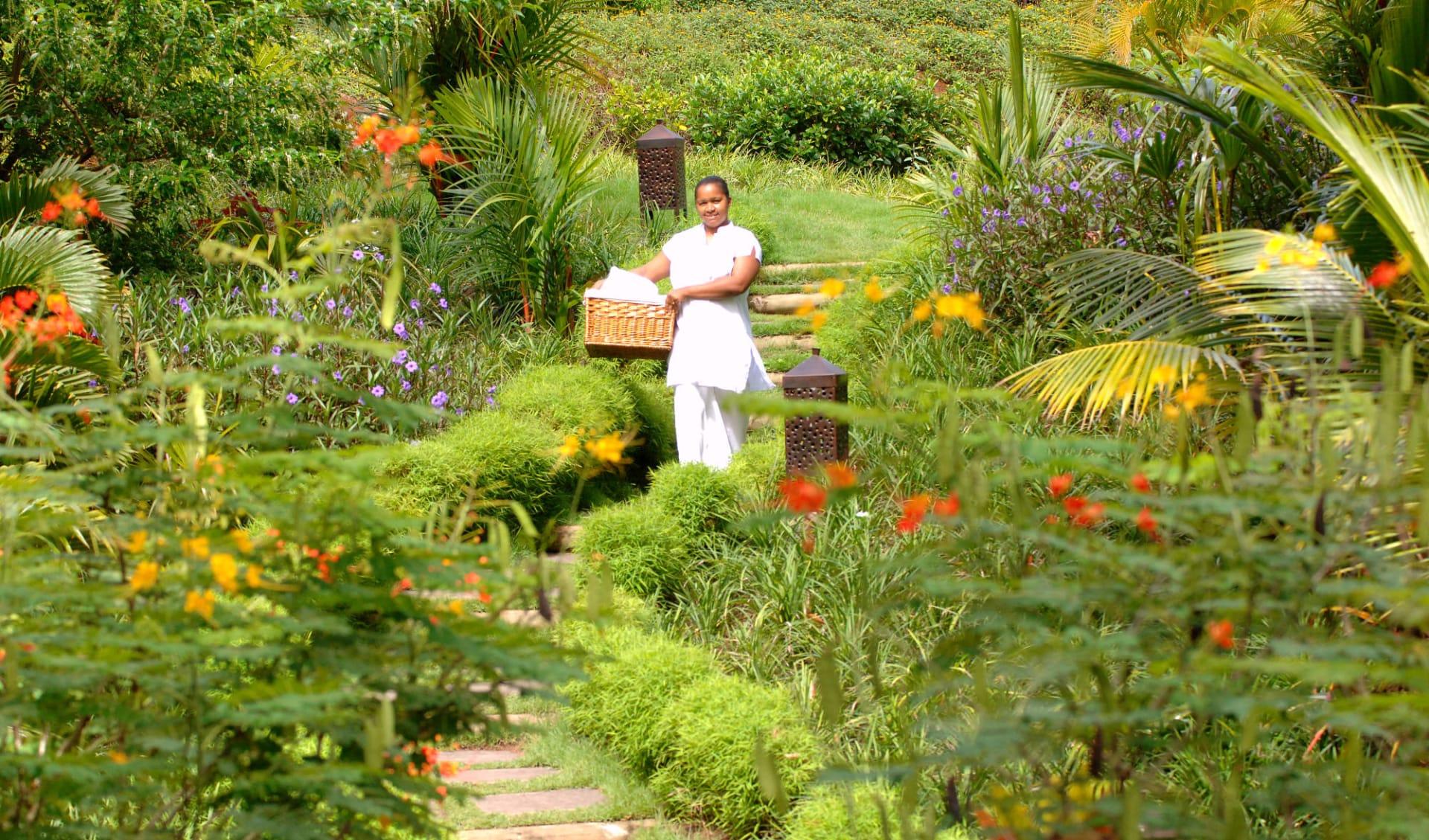 Lakaz Chamarel Exclusive Lodge:  Botanical Garden