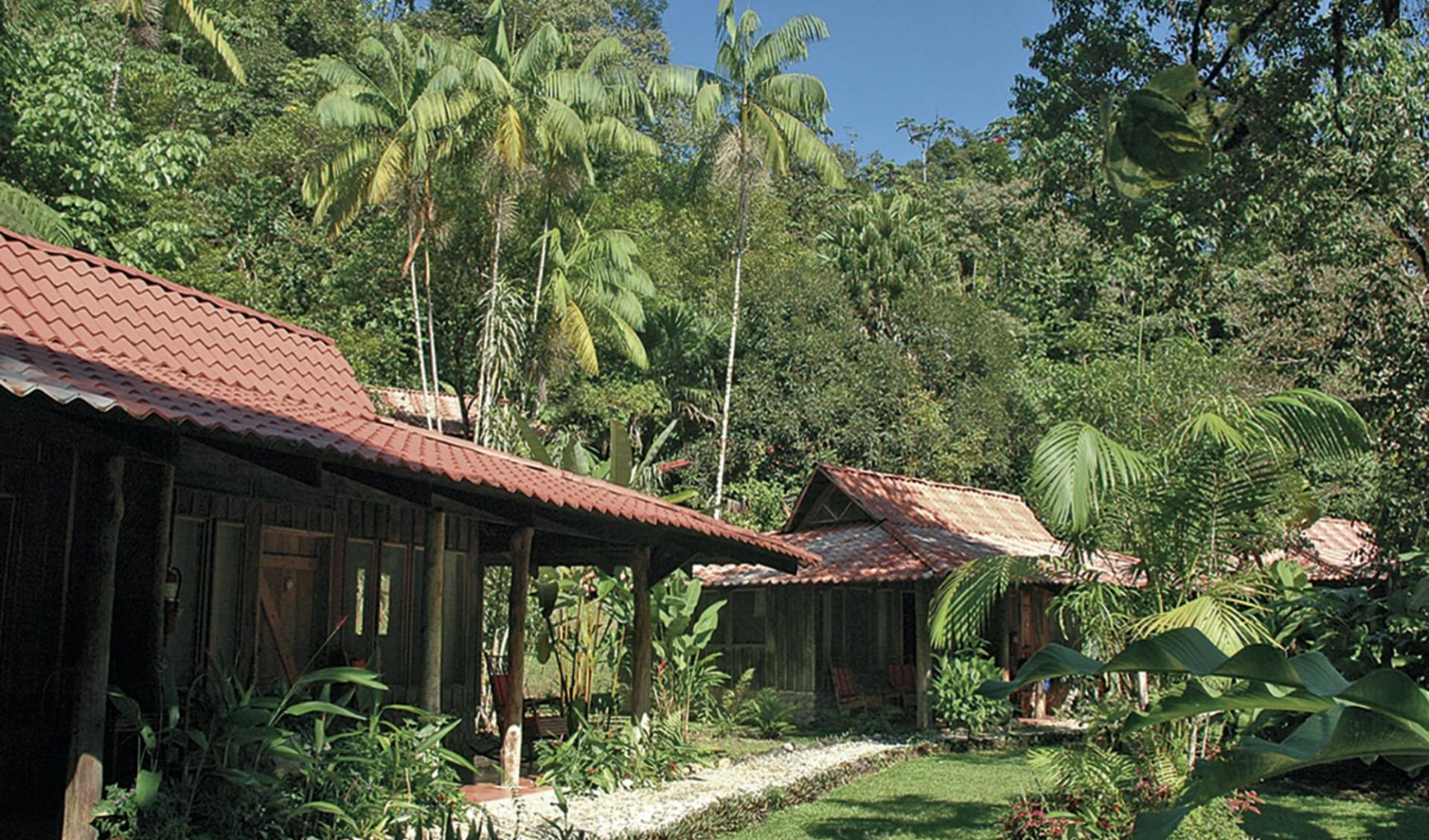 Esquinas Rainforest Lodge in Golfito: exterior esquinas rainforest lodge natur jungle