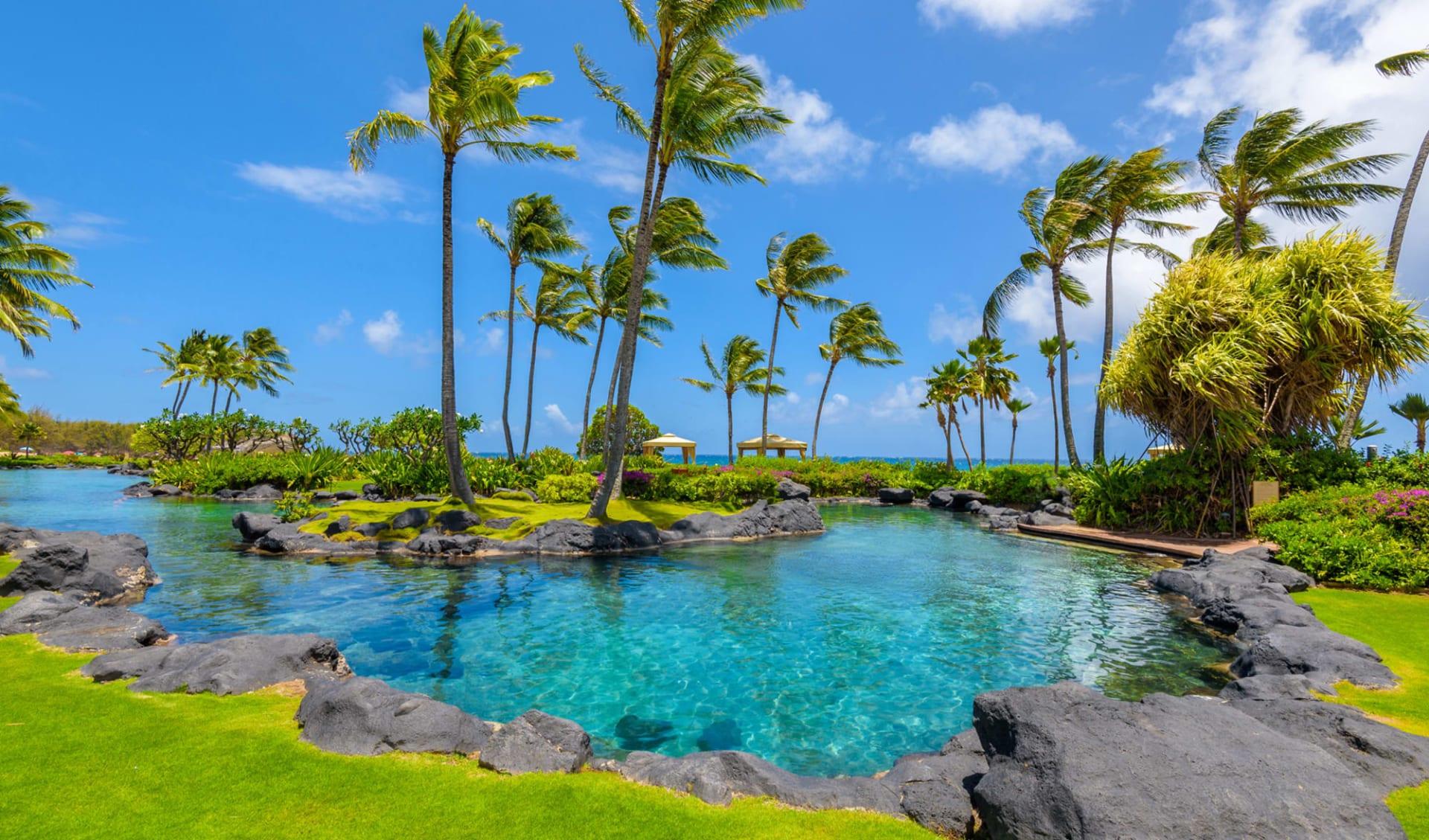 Grand Hyatt Kauai Resort & Spa in Poipu - Kauai:  Exterior_Grand Hyatt Kauai Resort_Lagune_ATI