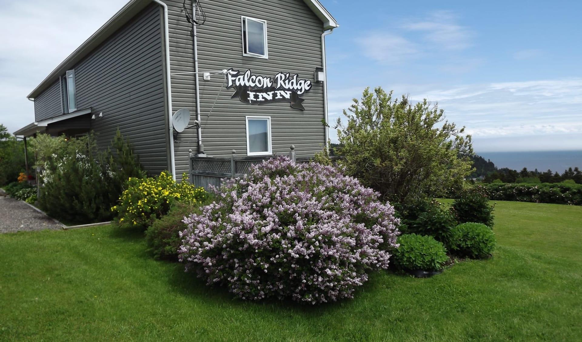 Falcon Ridge Inn in Alma: Aussenansicht