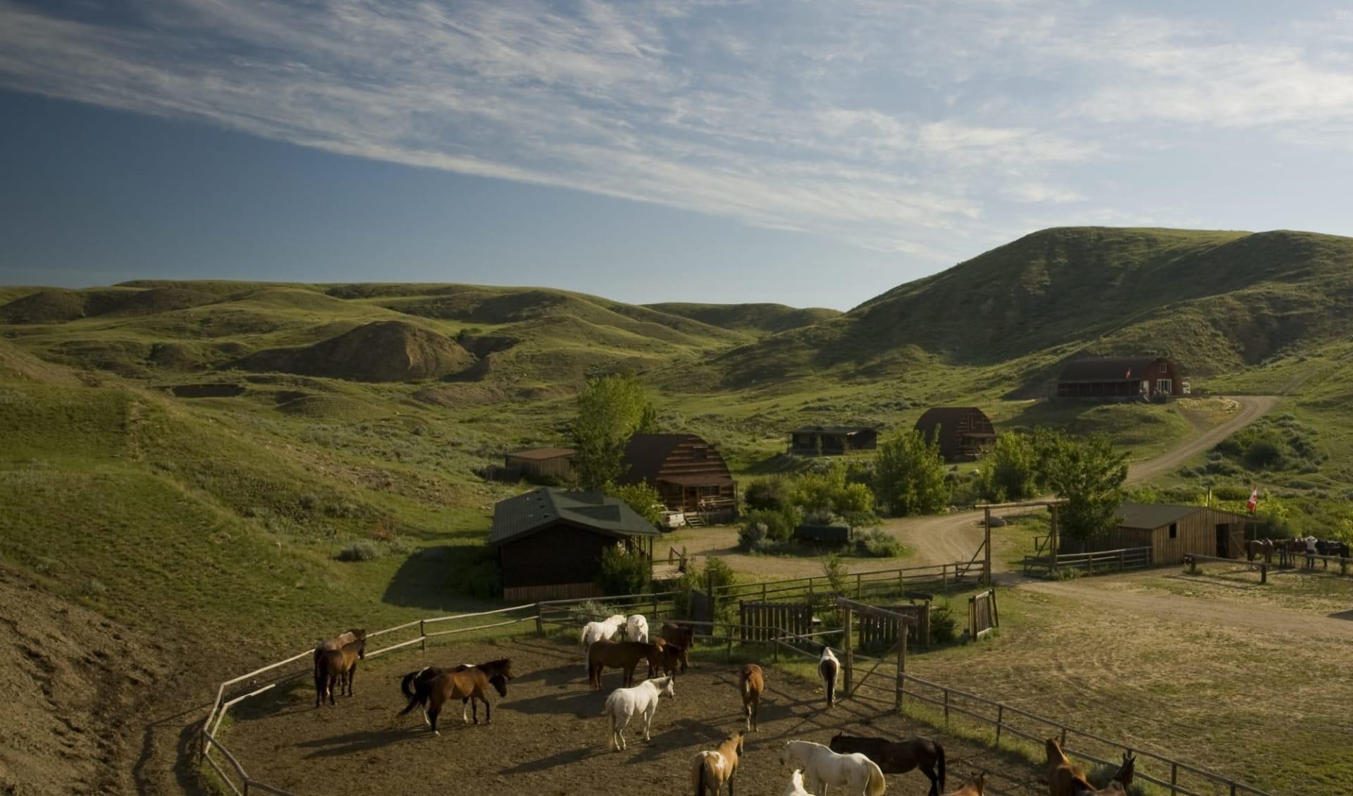 La Reata Ranch in Kyle: exterior_La Reata Ranch_aerial