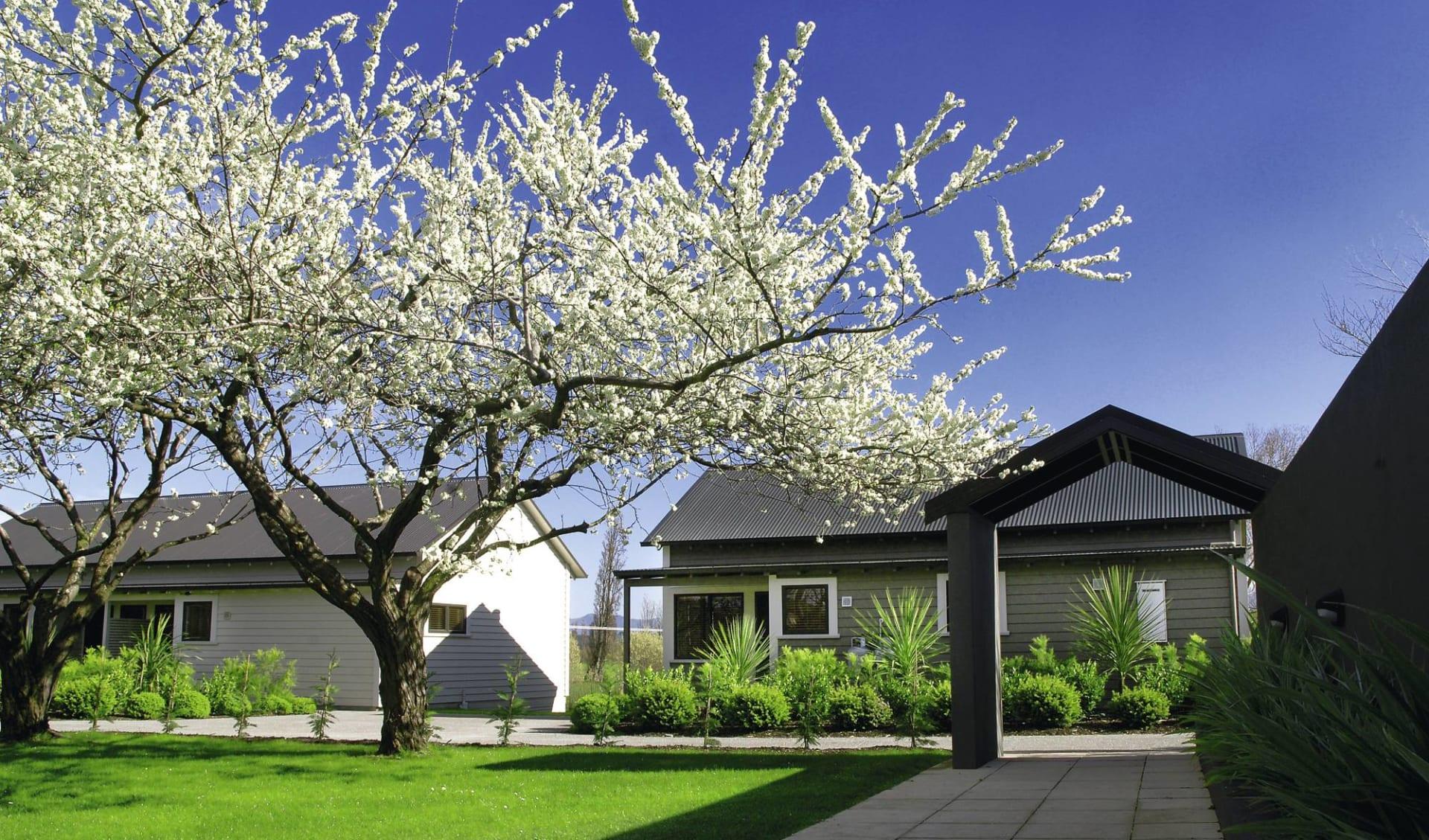 Peppers Parehua Martinborough:  Peppers Parehua Martinborough - Blick auf Lodge mit blühenden Bäumen