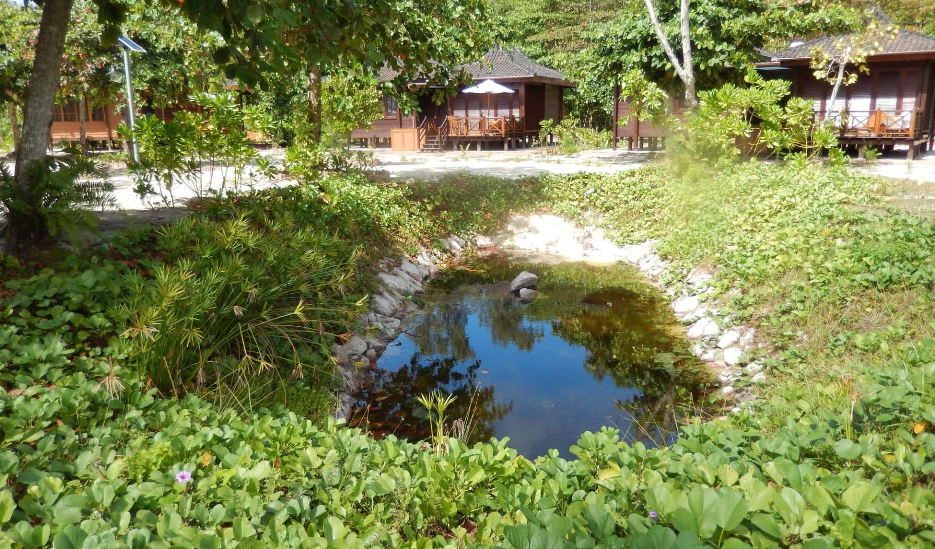 Heliconia Grove in Praslin: Pond