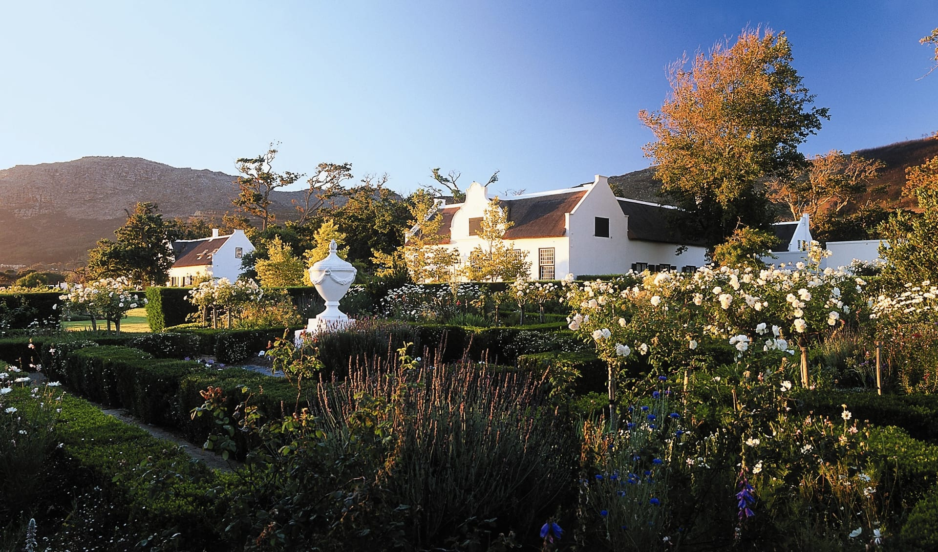 Steenberg Hotel & Golf Estate in Kapstadt:  Steenberg Hotel & Golf Estate - Gartenanlage