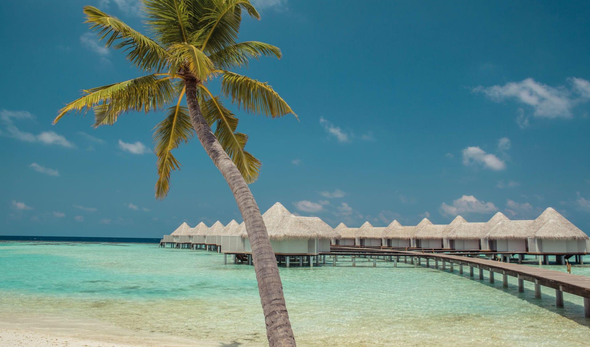 Drift Thelu Veliga Retreat in Ari-Atoll:  Water Villas