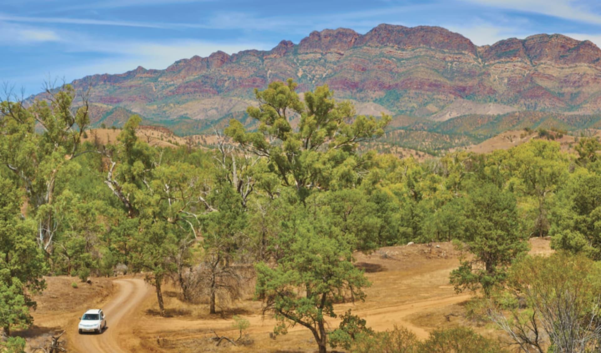 Flinders Ranges Outback ab Adelaide: Flinders Ranges